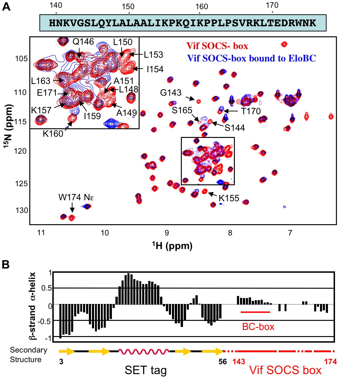 NMR spectroscopy of the Vif SOCS-box.