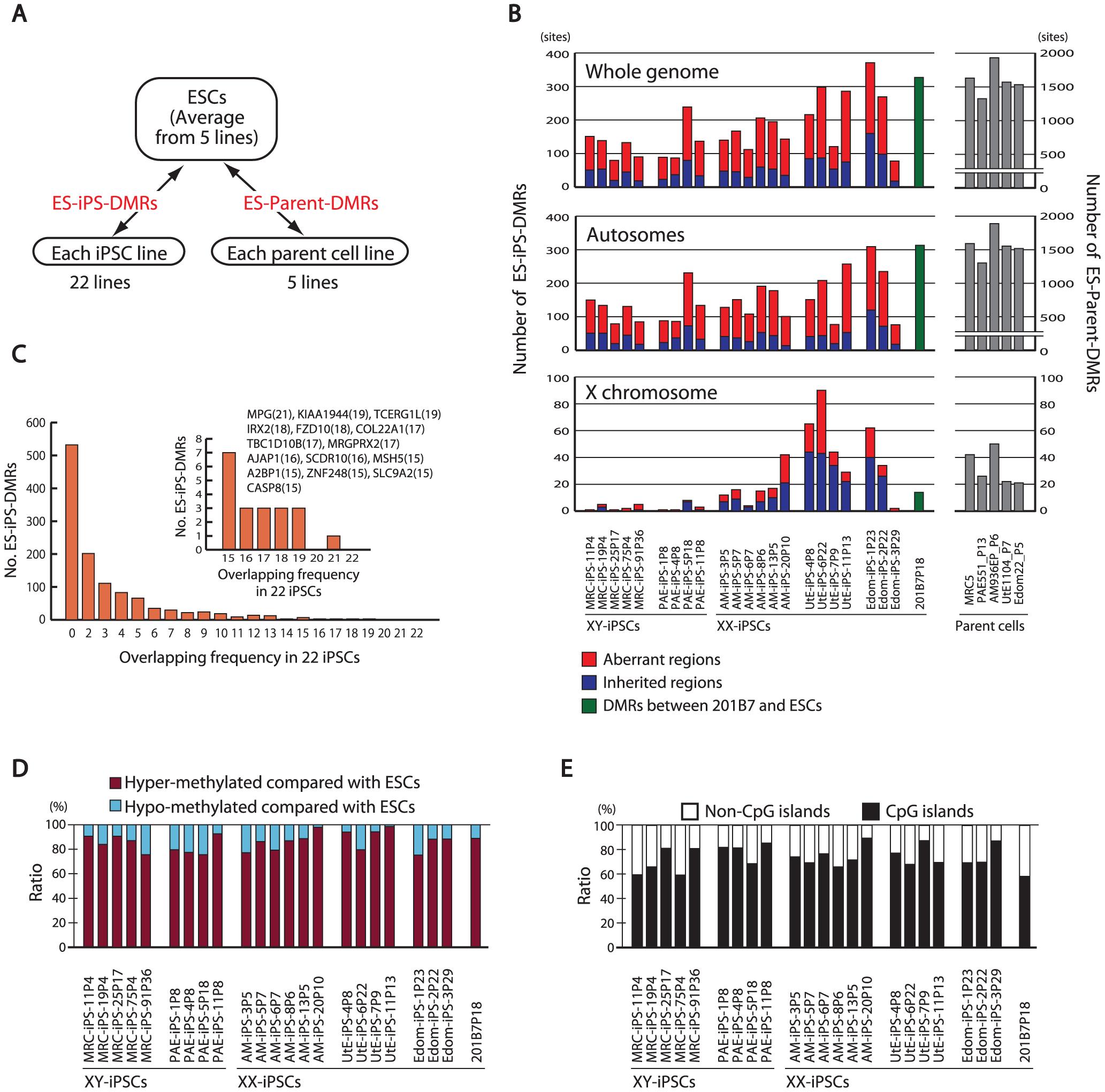 Aberrant methylation in human iPSCs.