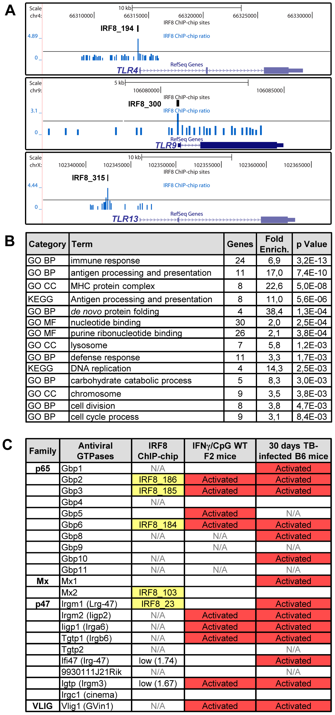 IRF8 regulates important functions of APC cells.