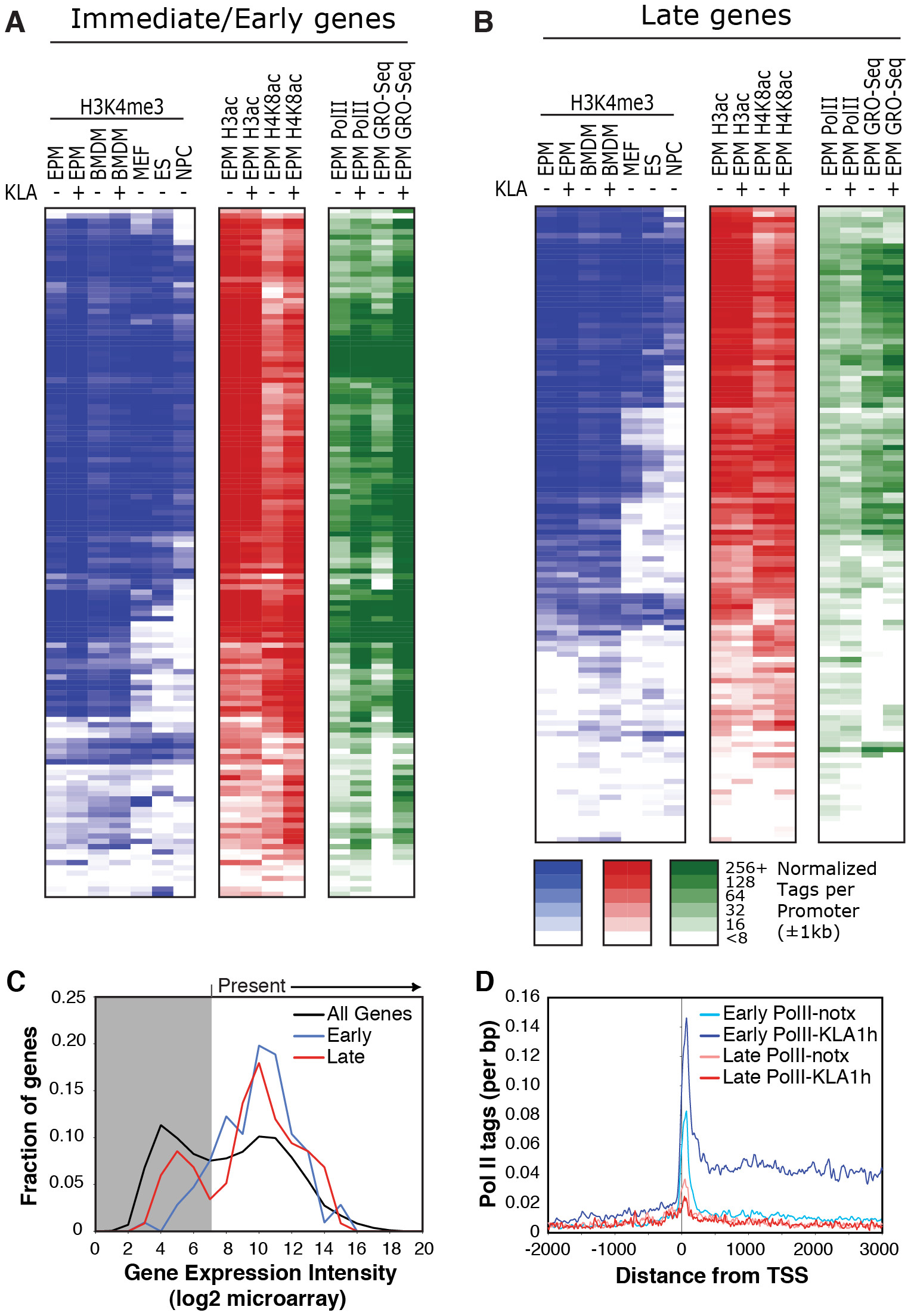 Relationships of histone modifications and RNA polymerase II at I/E and late TLR4-responsive promoters.