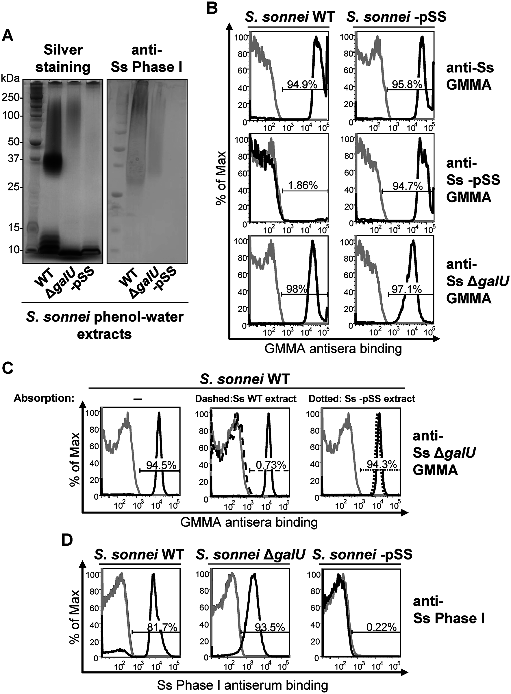 <i>S</i>. <i>sonnei</i> Δ<i>galU</i> LPS mutant possesses immunogenic and antigenic Phase I material on the surface.