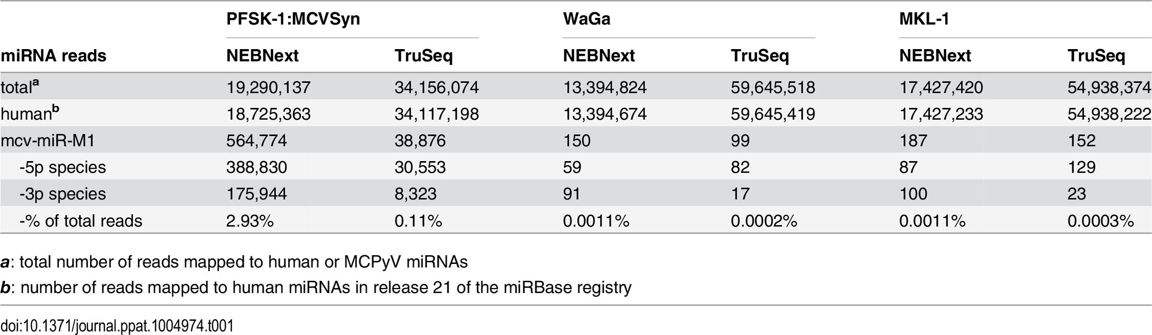 Small RNA-seq summary statistics.