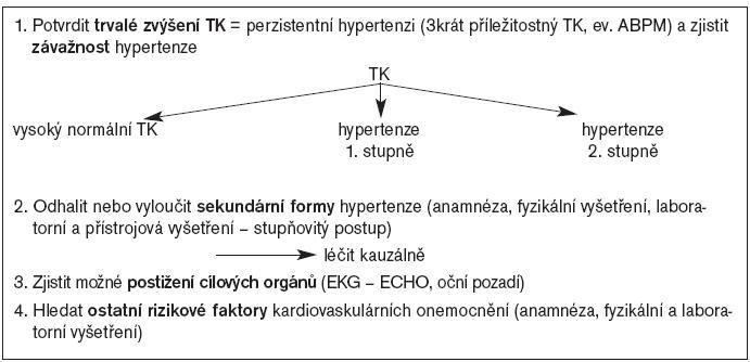 Schéma 1. Algoritmus vyšetřovacího postupu u dítěte s naměřeným zvýšeným TK.