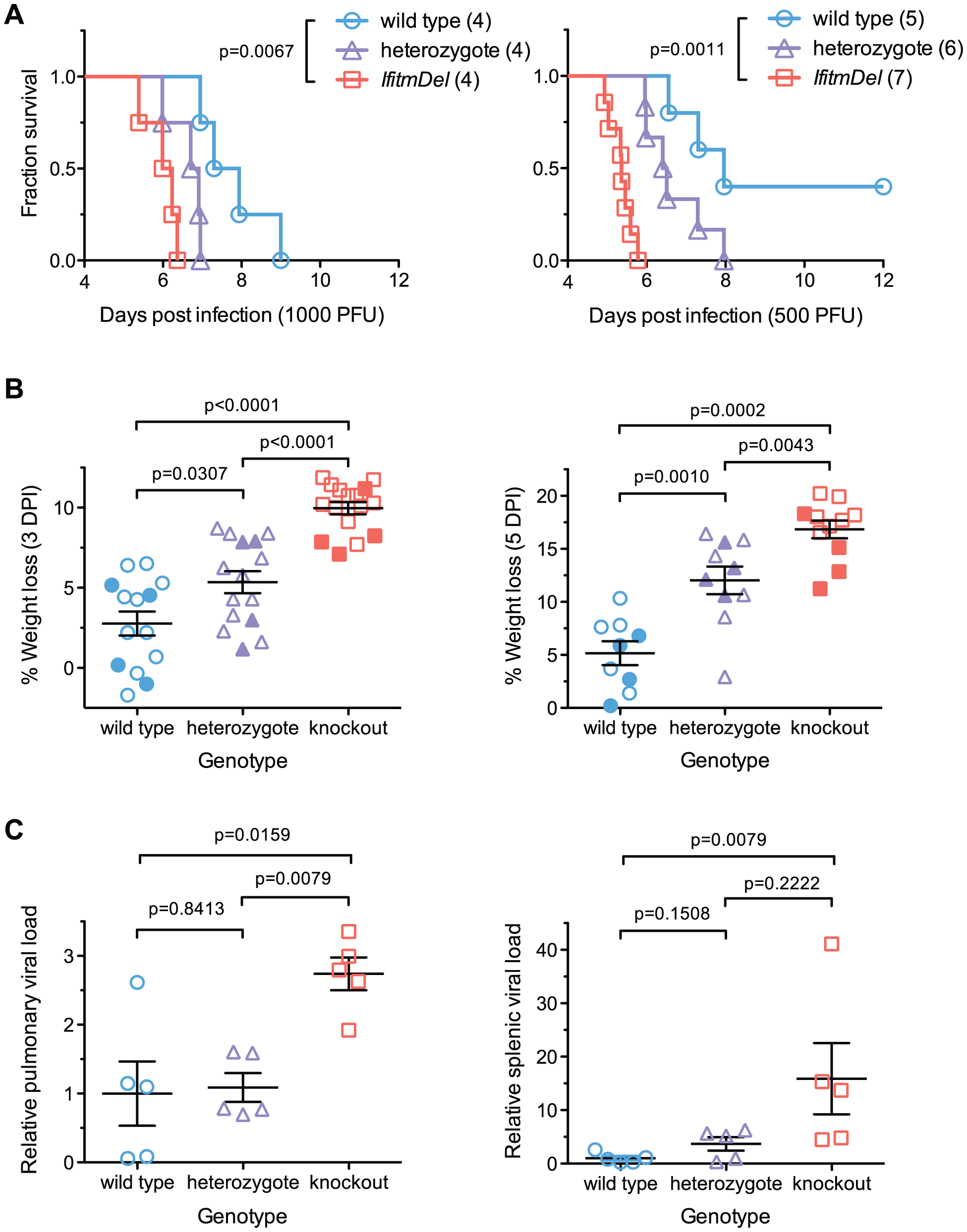 An <i>Ifitm</i> locus deletion renders mice more susceptible to influenza.