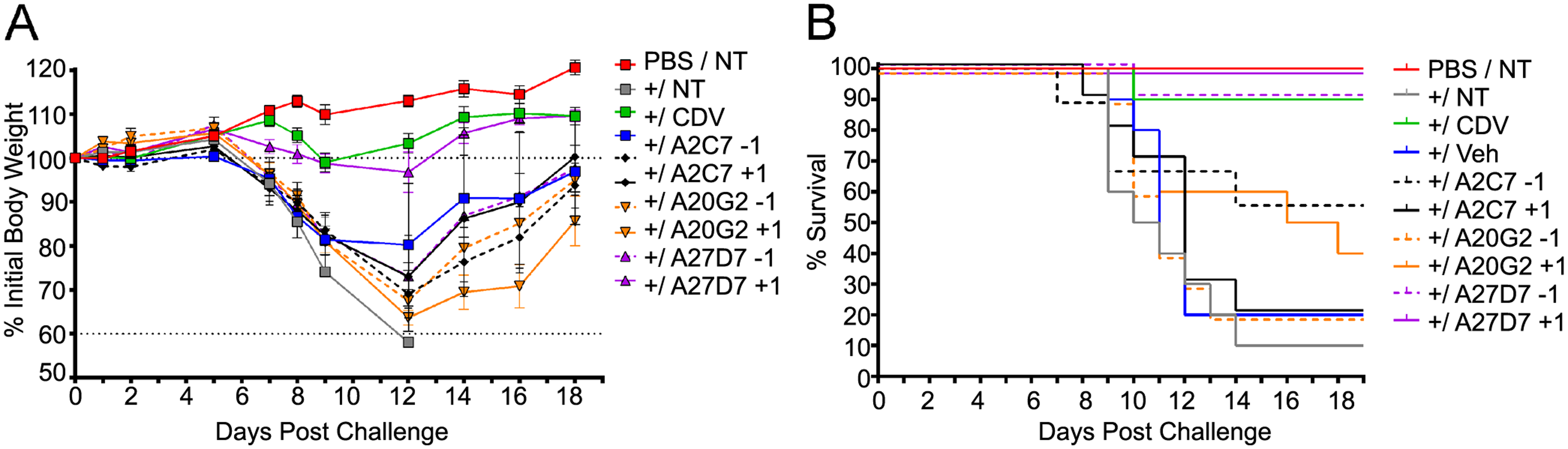 Treatment with antibody A27D7 protects mice against a lethal ECTV challenge.