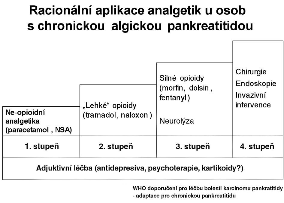 Racionální aplikace analgetik u osob s chronickou algickou pankreatitidou