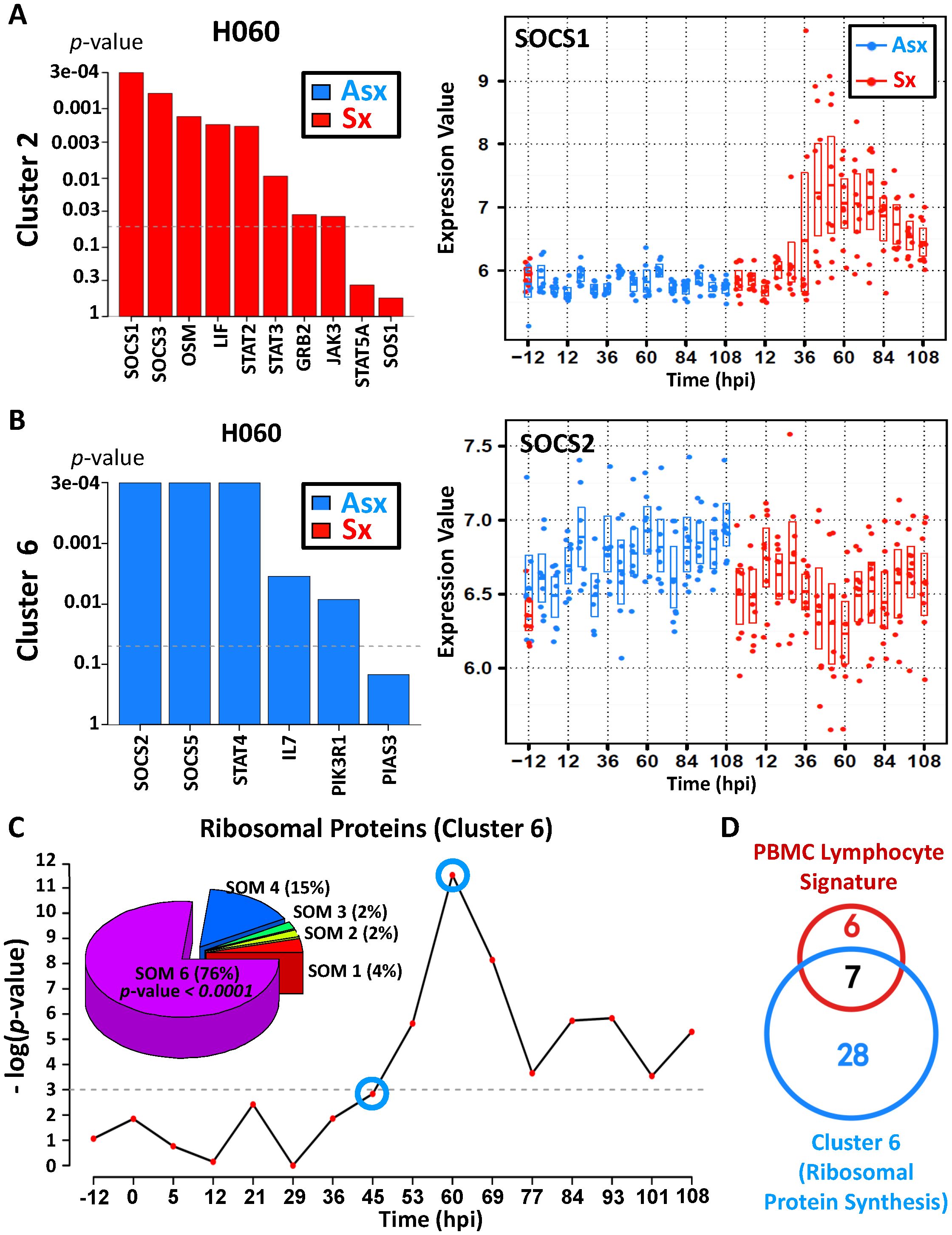 Asymptomatic hosts showed unique temporal expression kinetics of cluster 6 genes related to JAK-STAT signaling transduction and protein biosynthesis.