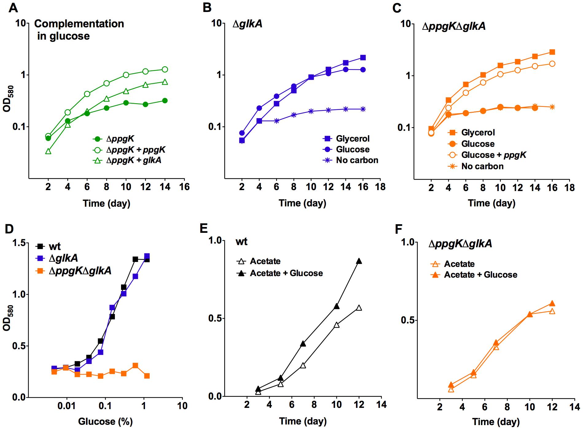 Rv0650 (GLKA) can mediate growth on glucose.