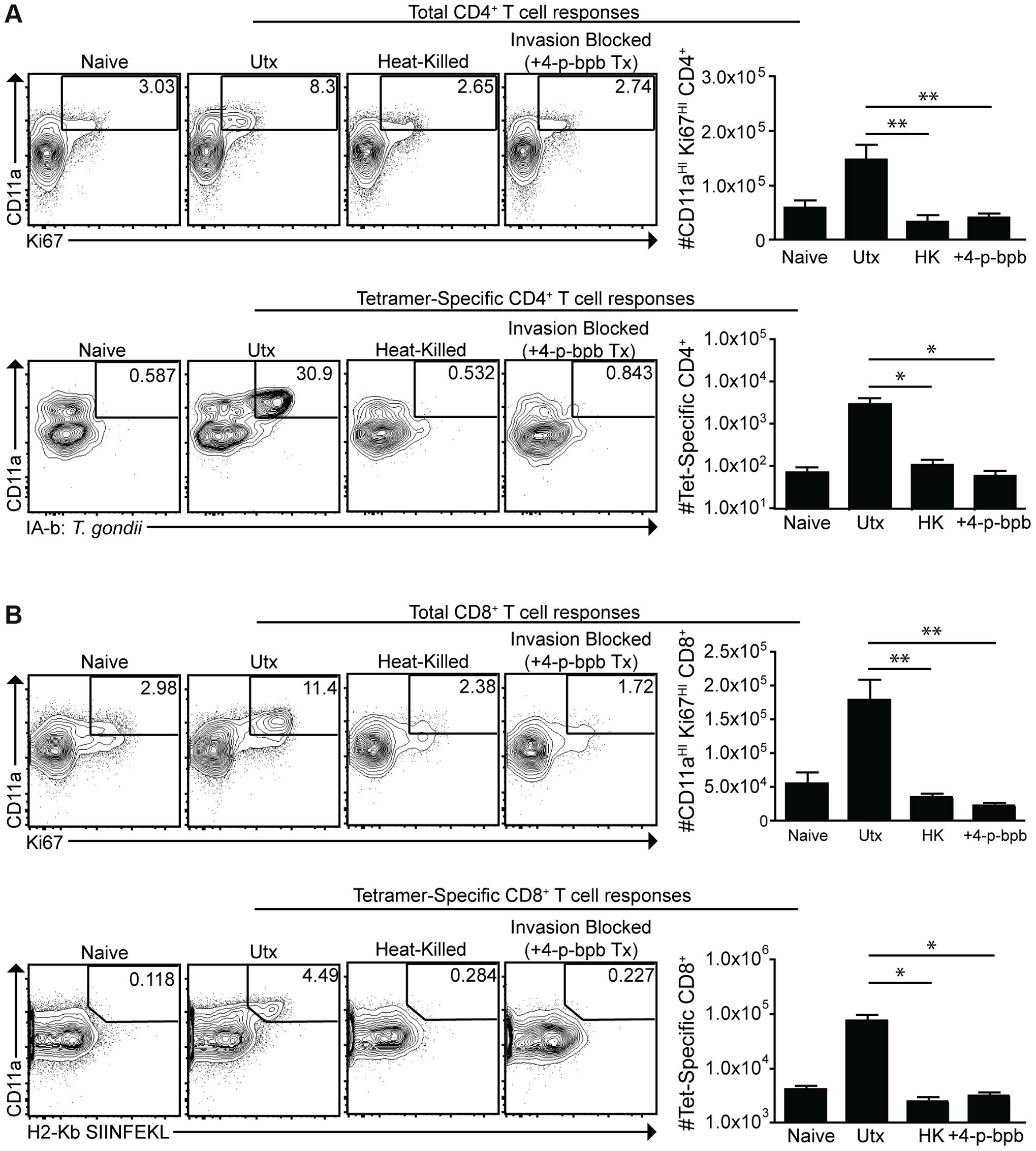 Active invasion is required for adaptive immune responses to <i>T. gondii</i>.