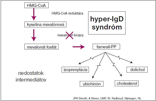 Schéma. Miesto, kde sa defekt syntézy mevalonát kinázy prejavuje pri biosyntéze prekurzorov izoprenoidu a cholesterolu (www.hids.net).