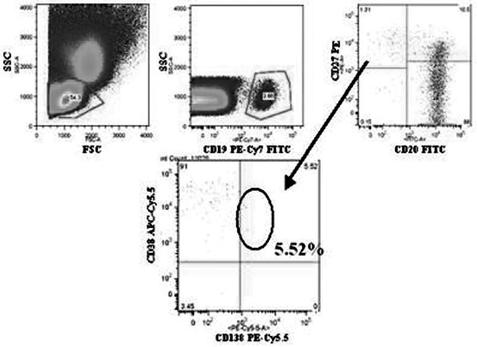 Charakterizace CD19+CD20-CD27highCD38+CD138+ plazmatických buněk. První histogram ukazuje lymfocytárně-monocytární region definovaný velikostí a granularitou buněk (parametry SSC a FSC), dále následuje vymezení buněk nesoucích CD19 znak (druhý histogram), třetí a čtvrtý histogram znázorňují absenci/ přítomnost znaků CD27, CD20, CD38 a CD138. Kroužek a šipka znázorňují CD38+CD138+ dvojitě pozitivní buňky, které pocházejí z prvního kvadrantu 3. histogramu (tj. CD27highCD20-).