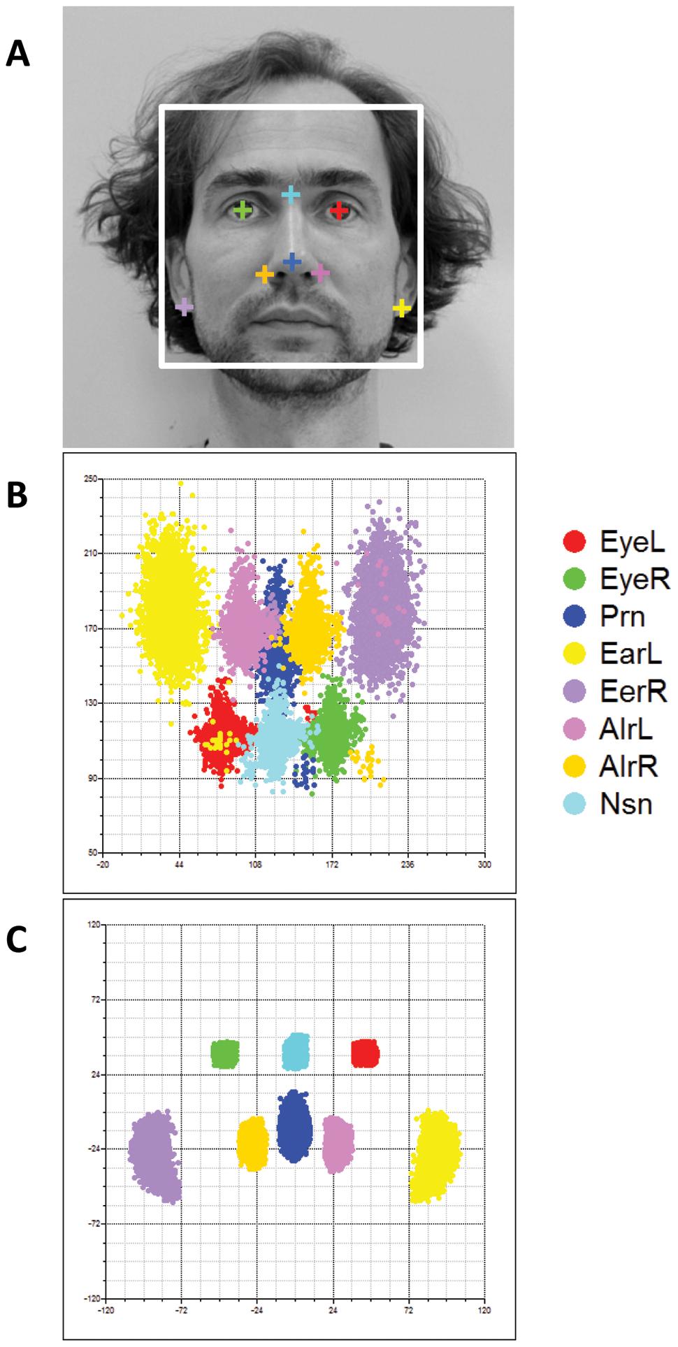 Facial landmarks from 2D portrait photos.