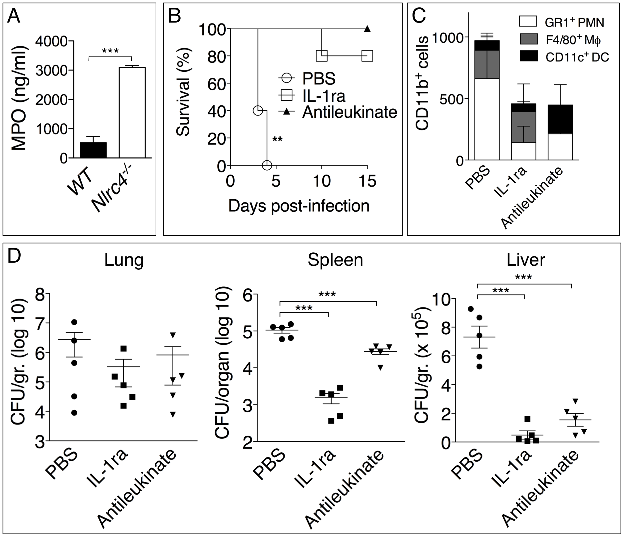 Inhibition of neutrophil recruitment to the lung protects <i>Nlrc4<sup>-/-</sup></i> mice from melioidosis.