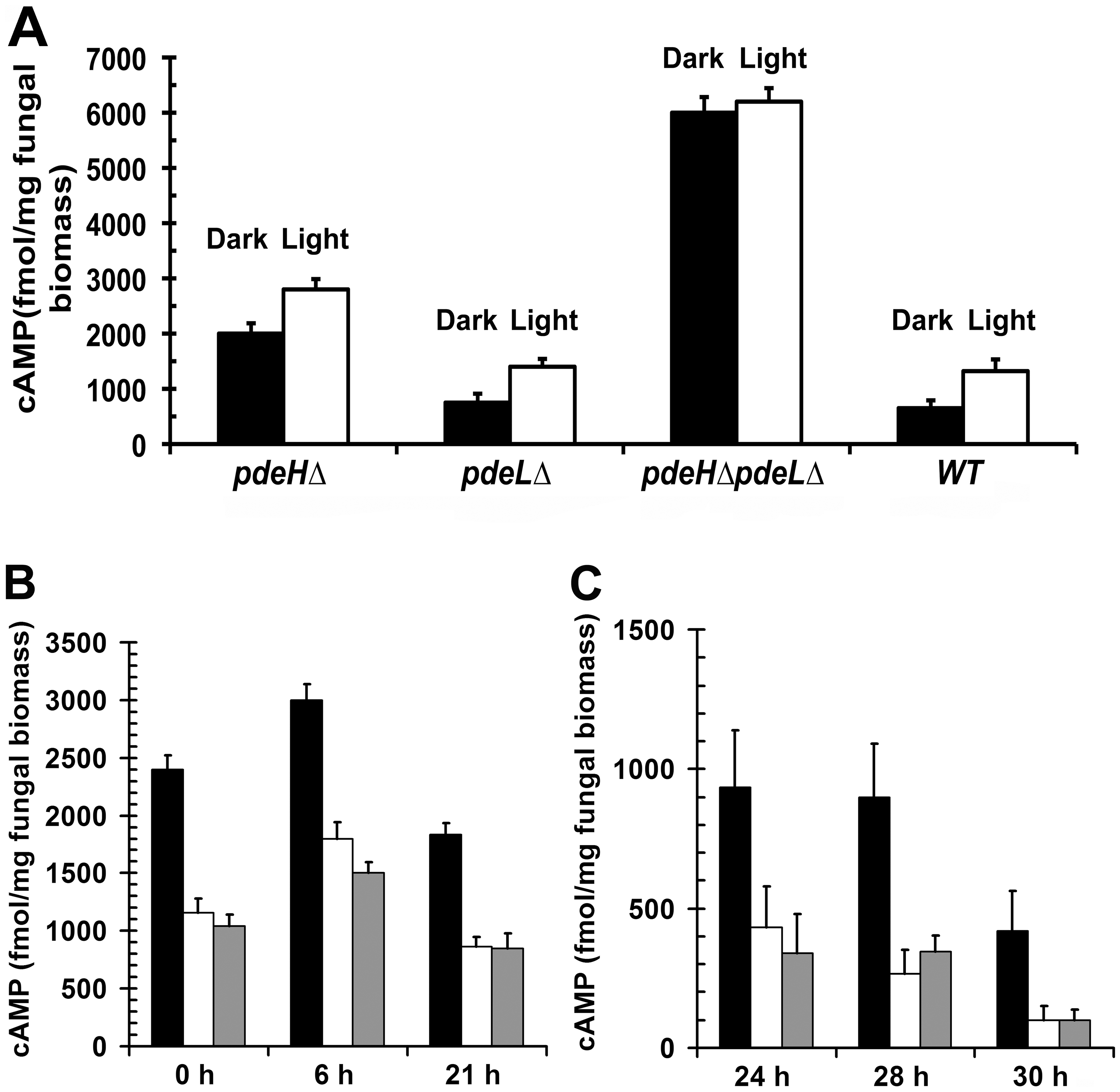 PdeH regulates the intracellular cAMP levels during growth and development in <i>M. oryzae</i>.