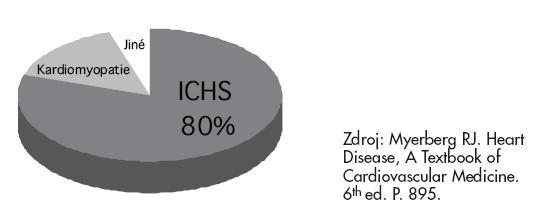 Etiologie NSS