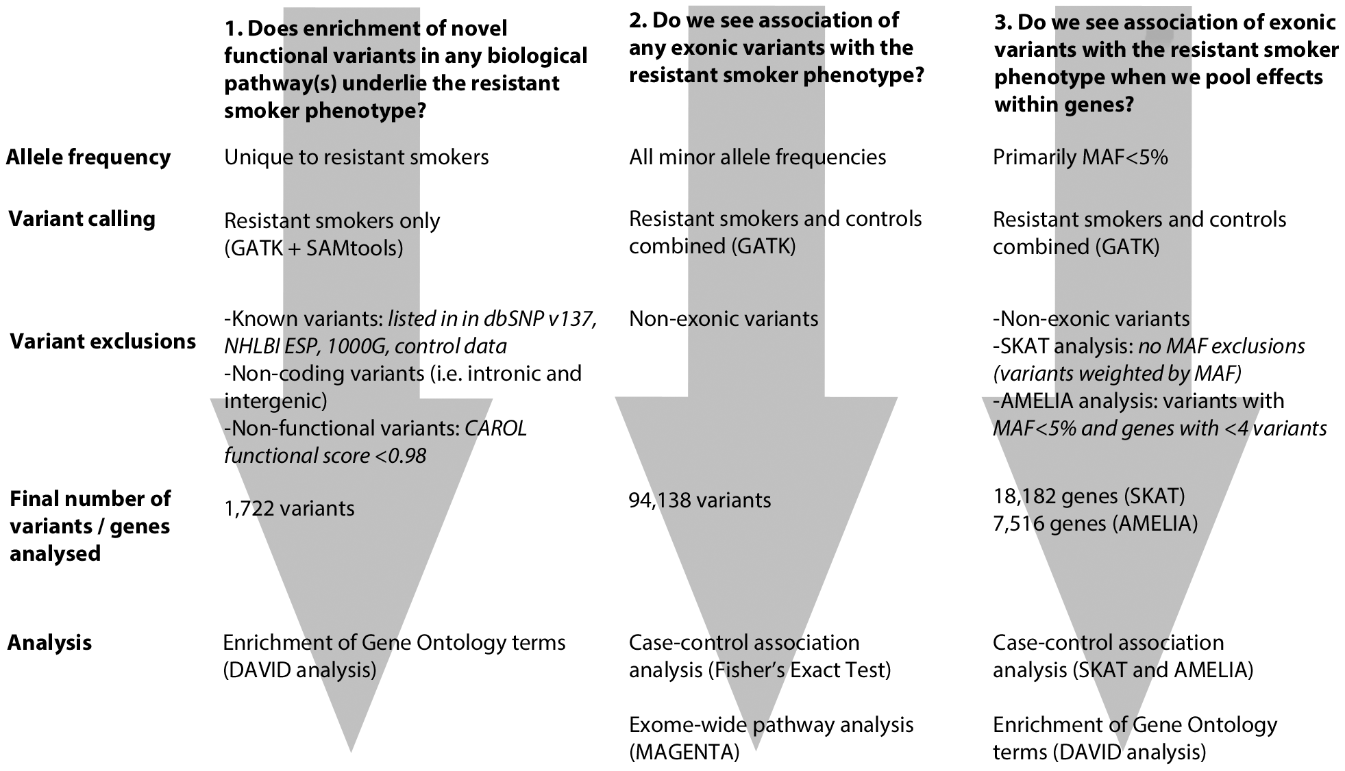 Flowchart describing each of the 3 main analytical pathways used to explore the genetic architecture of smoking resistance.