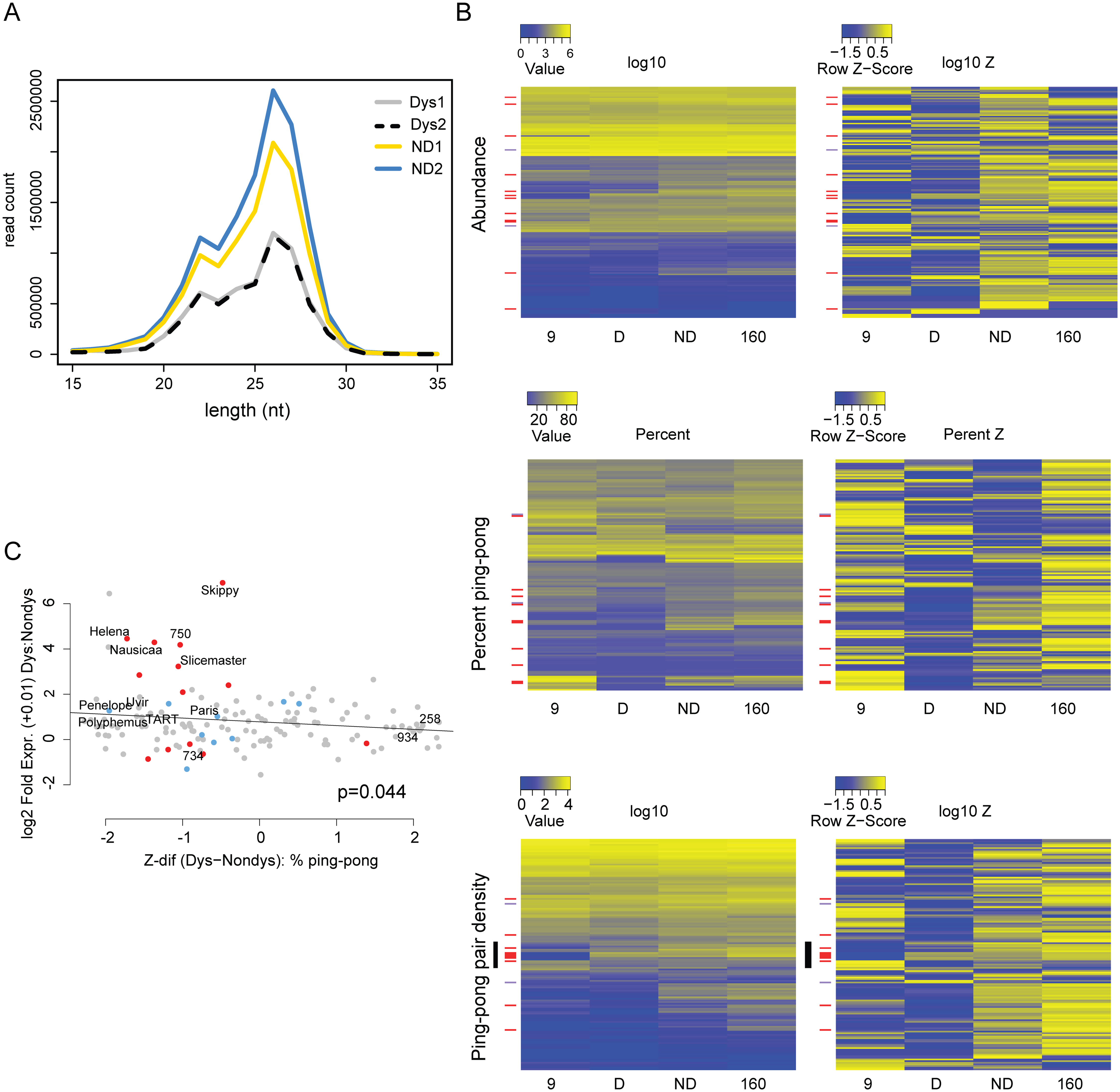 Signatures of piRNA biogenesis in the dysgenic germline show only modest defects.