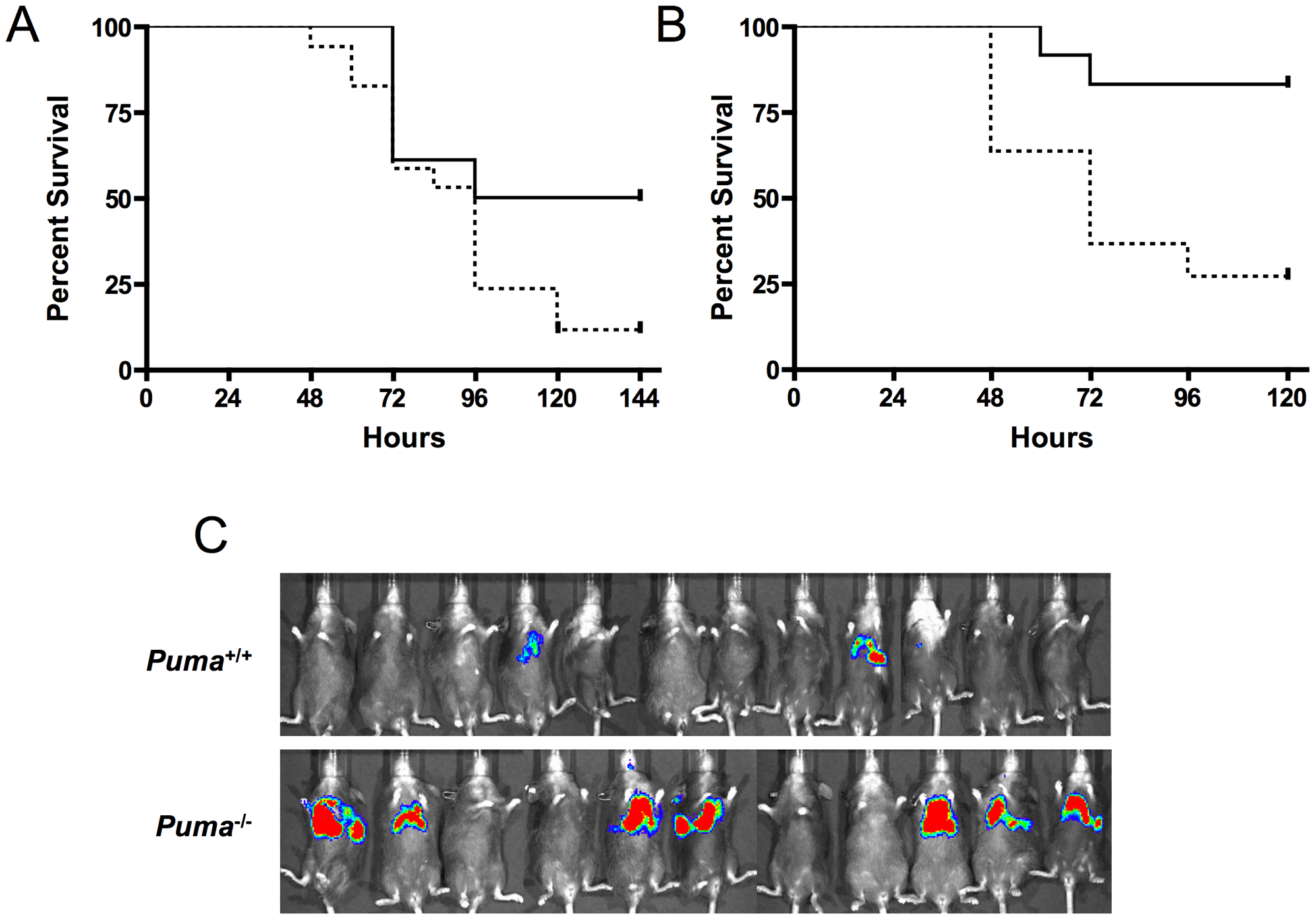 Survival of pneumococcal-infected mice deficient in p53 signaling factors.