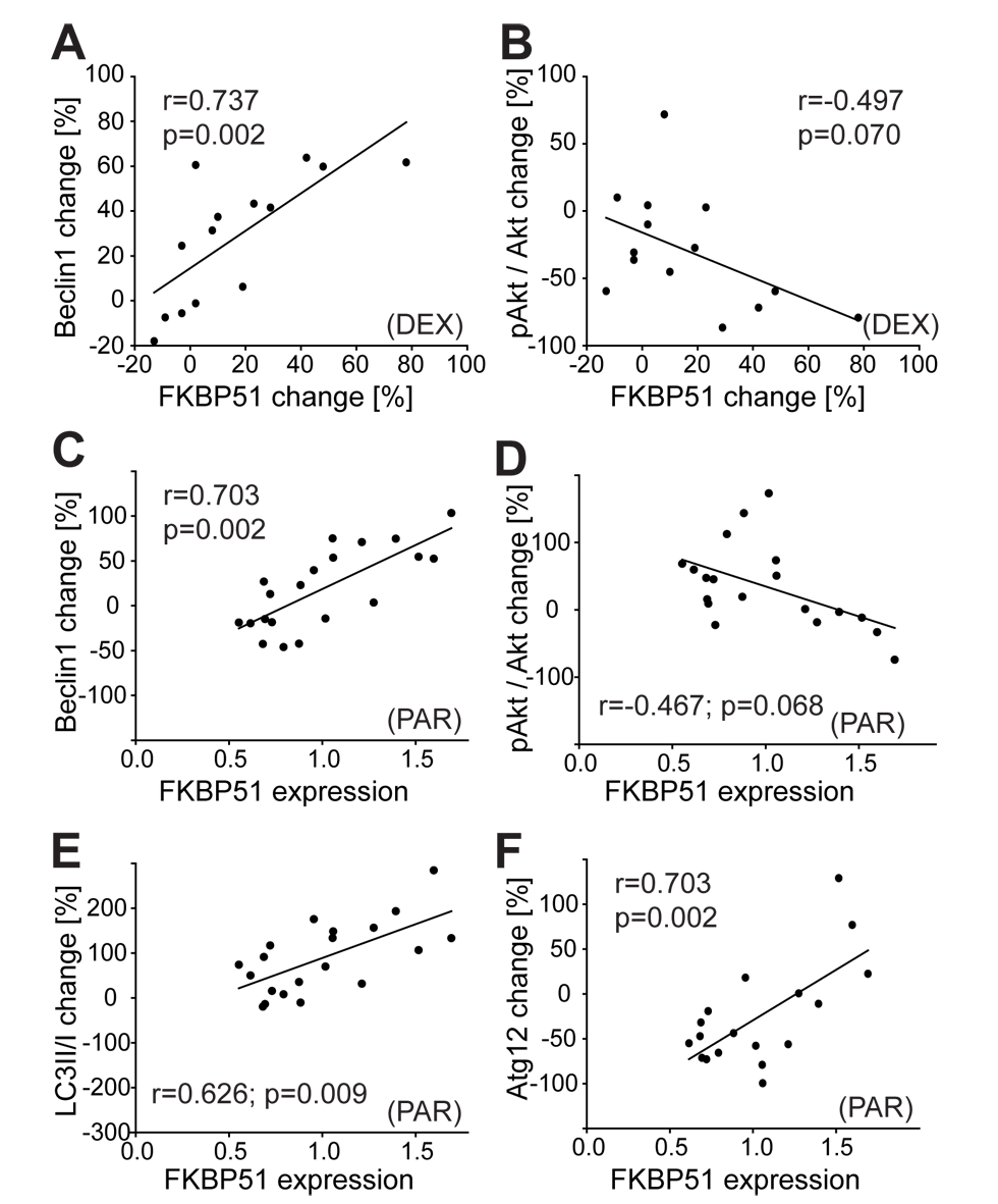 Effects of dexamethasone and of antidepressants on autophagic pathway components in human PBMCs correlate with FKBP51.