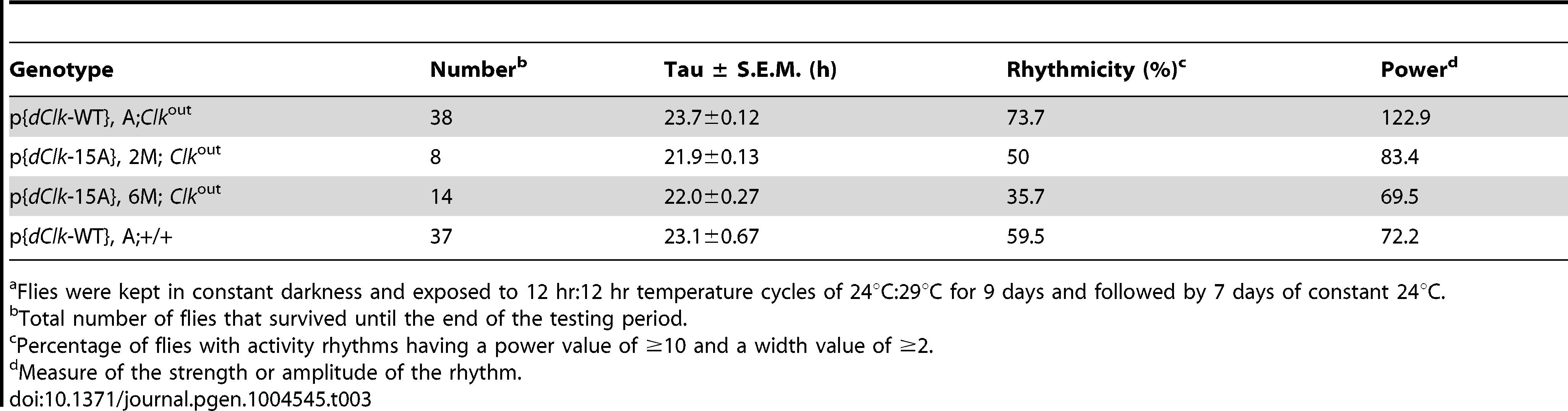 Behavioral analysis of p{<i>dClk</i>-15A}; <i>Clk</i><sup>out</sup> flies following temperature cycles.<em class=&quot;ref&quot;>a</em>