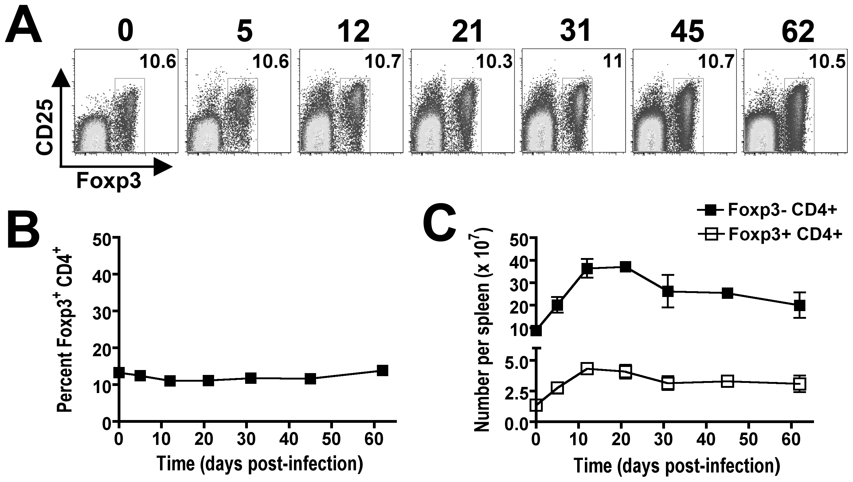 Parallel expansion of Foxp3<sup>+</sup> and Foxp3-negative CD4<sup>+</sup> T cells during persistent <i>Salmonella</i> infection.