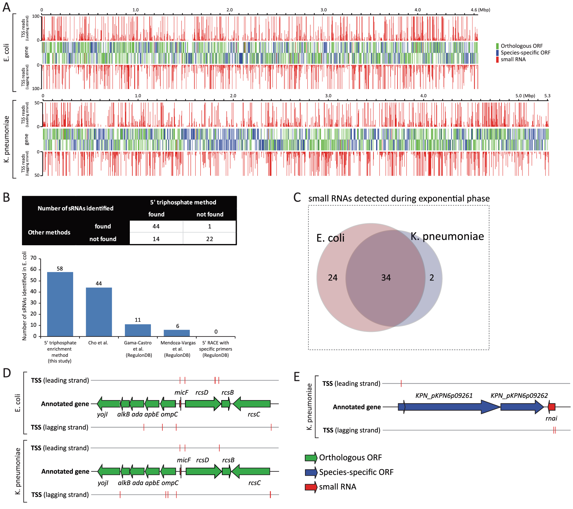 Experimentally determined TSSs and their association with annotated genes.