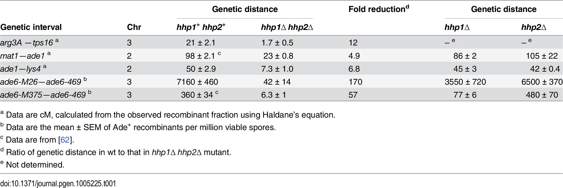 Meiotic recombination depends on redundant Hhp1 and Hhp2 kinases.