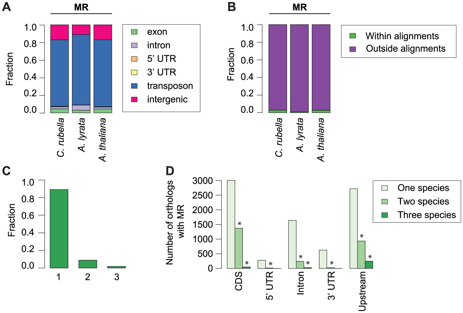 Conservation of methylated regions (MR).