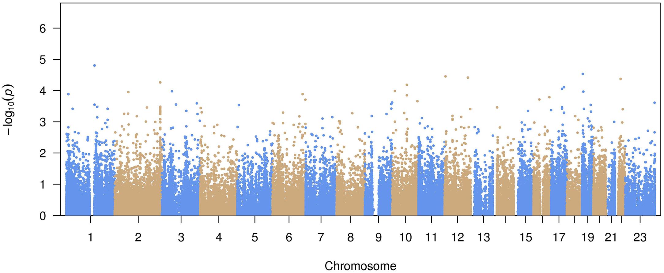 Manhattan plot of common variant associations with atrial fibrillation.