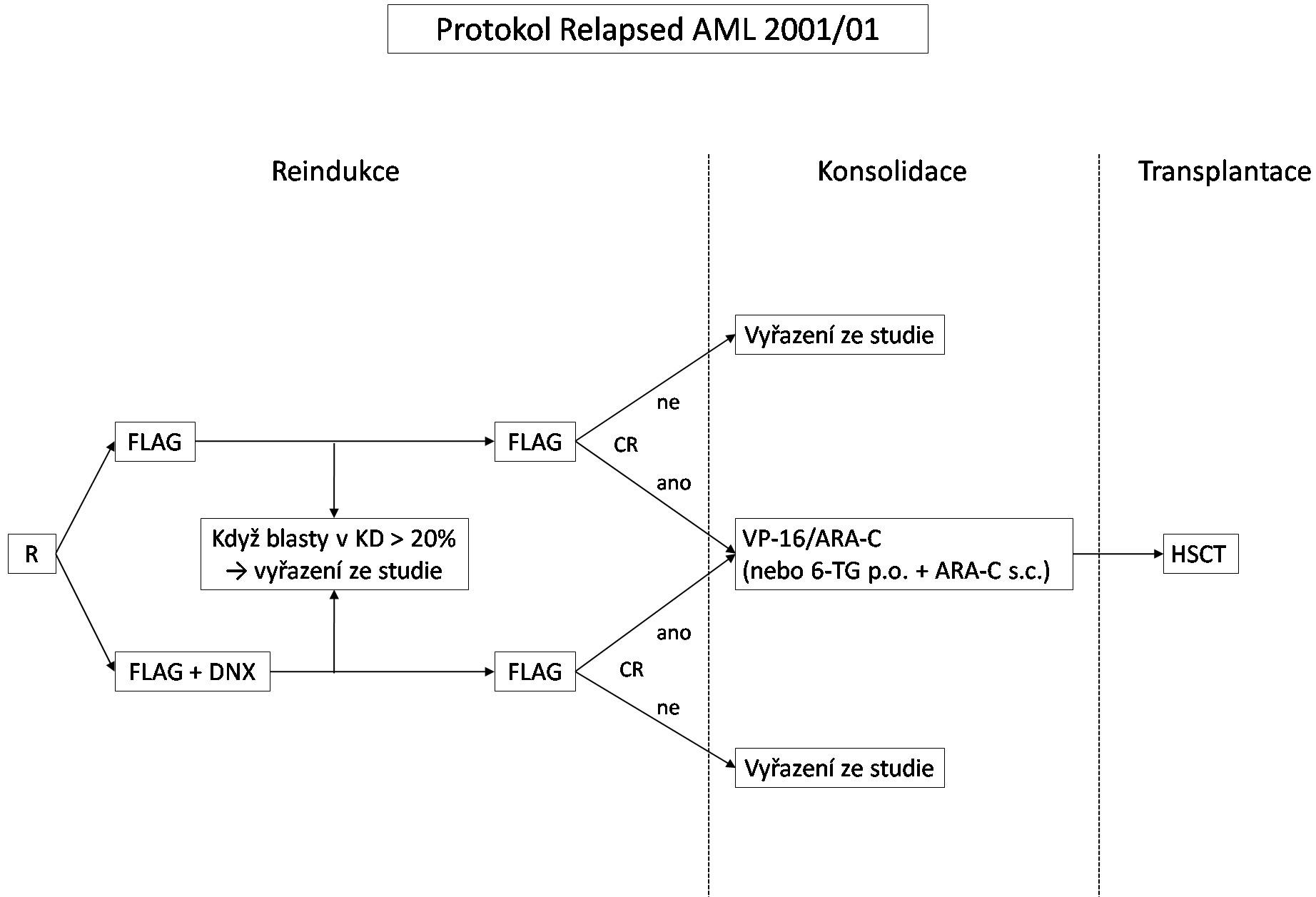 Schéma protokolu Relapsed AML 2001/01.