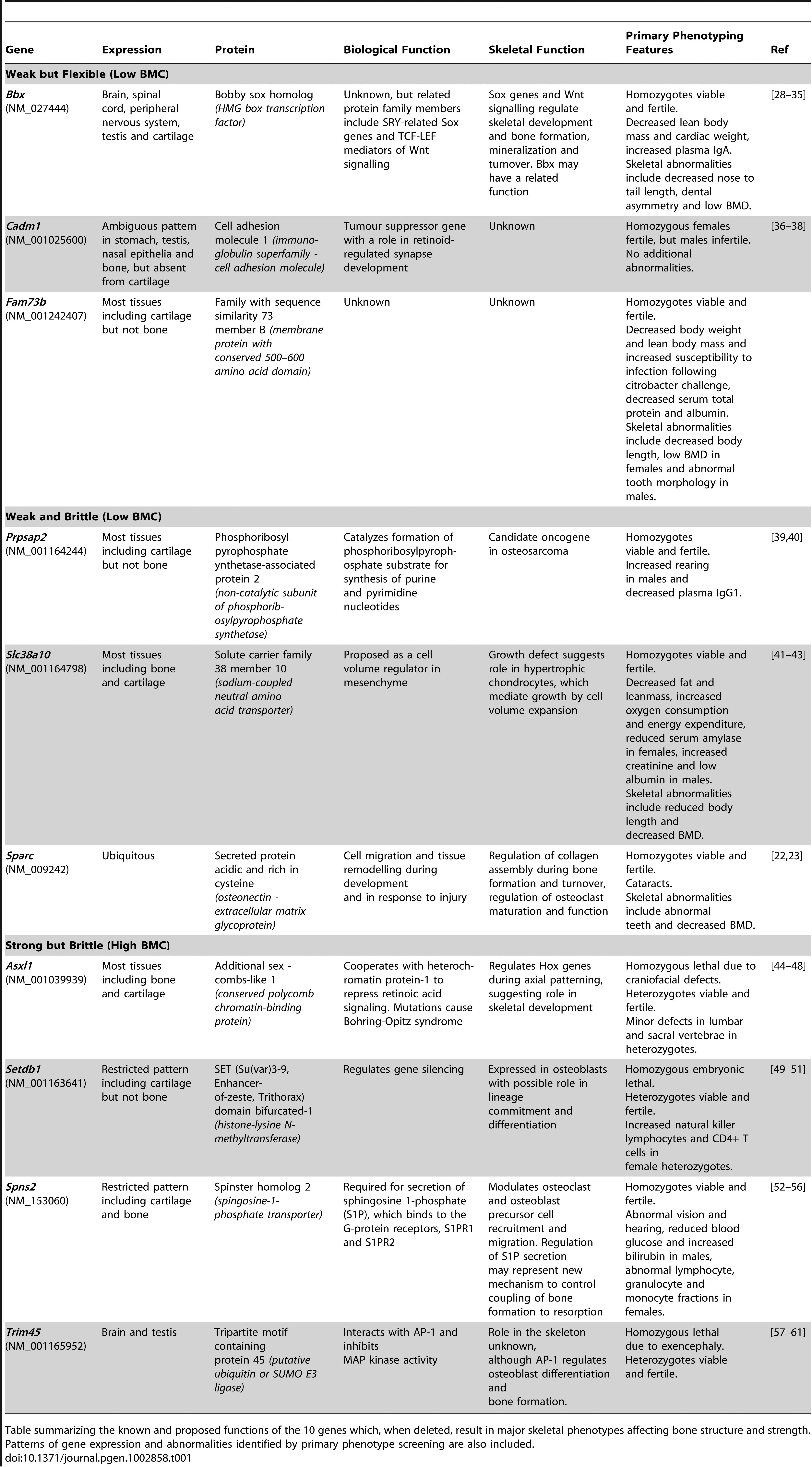 Functions of genes identified as determinants of bone strength.