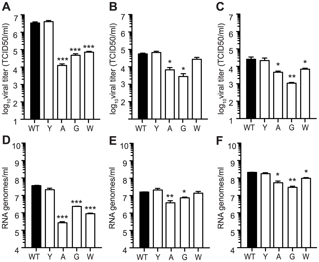 Mutators have replication defects in <i>Ae. albopictus</i>- and <i>Ae. aegypti</i>- derived cell culture.