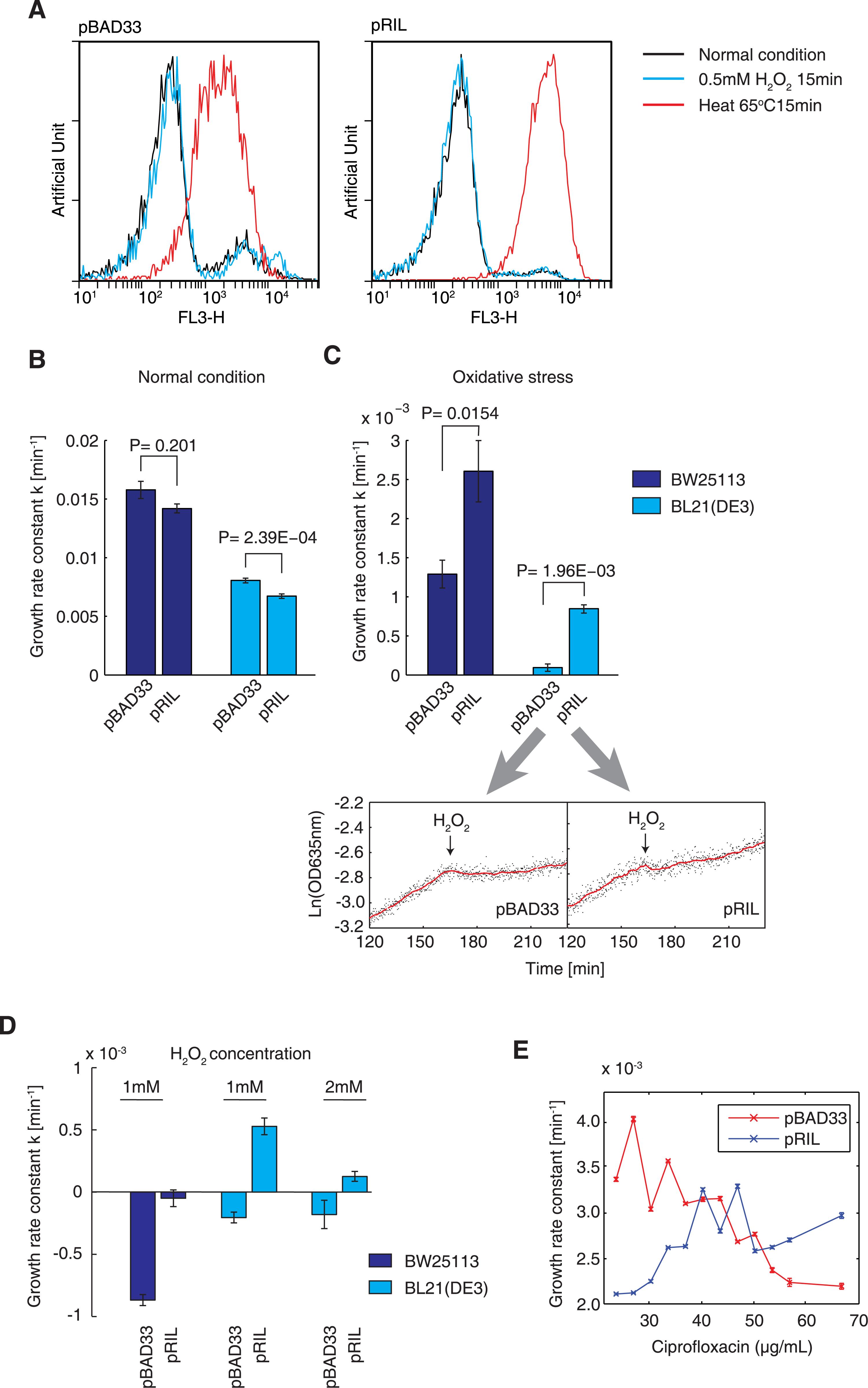 Higher tRNA concentrations improve adaptation under oxidative stress.