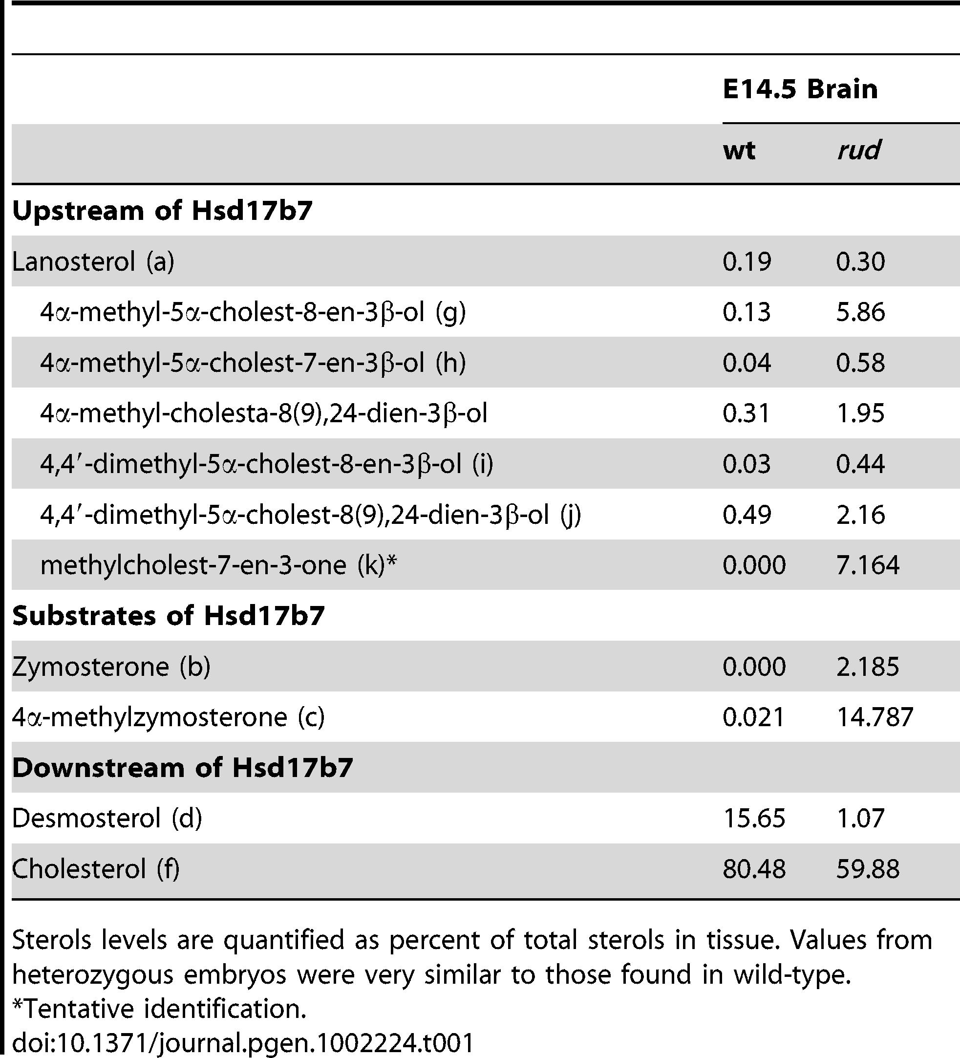 Analysis of sterols present in brain tissue.