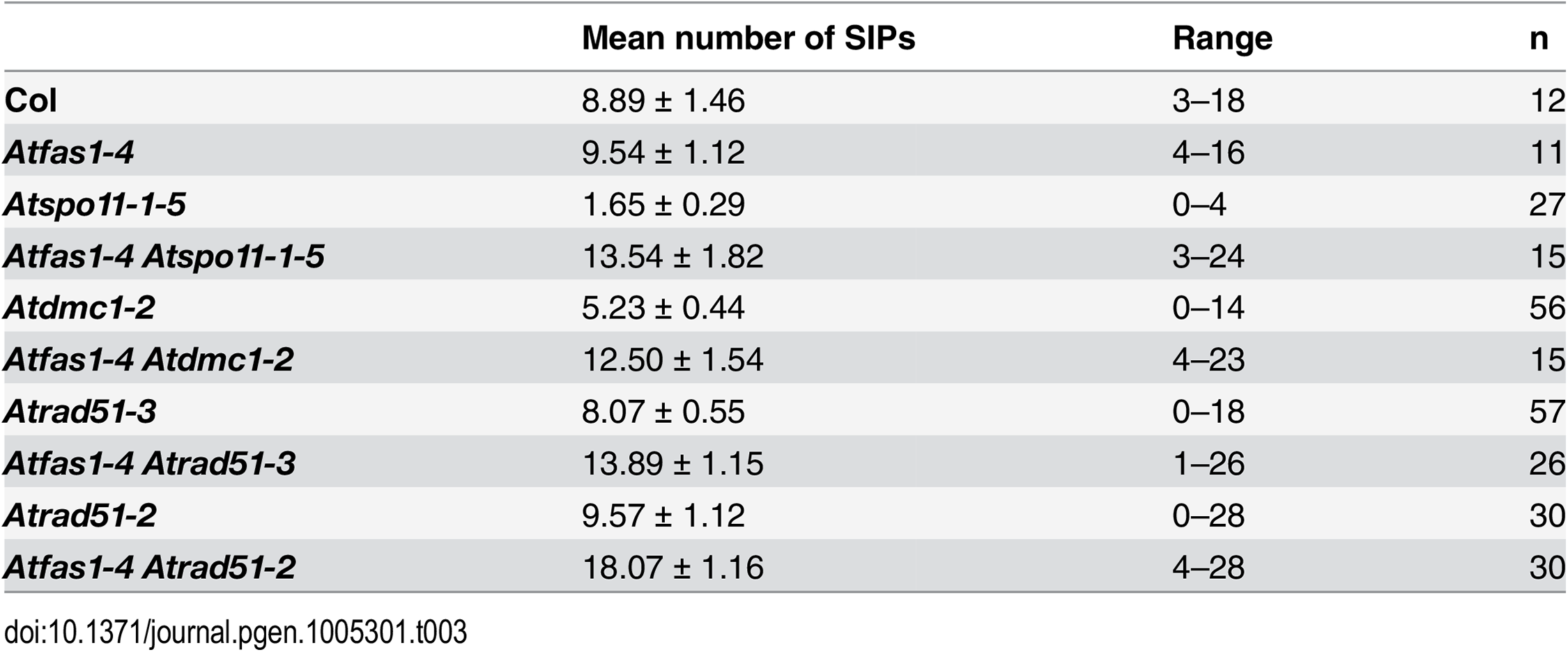 Mean numbers of SIPs per cell in the mutants analyzed.