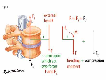 Fig. 4. Bending moment plus compressive force.