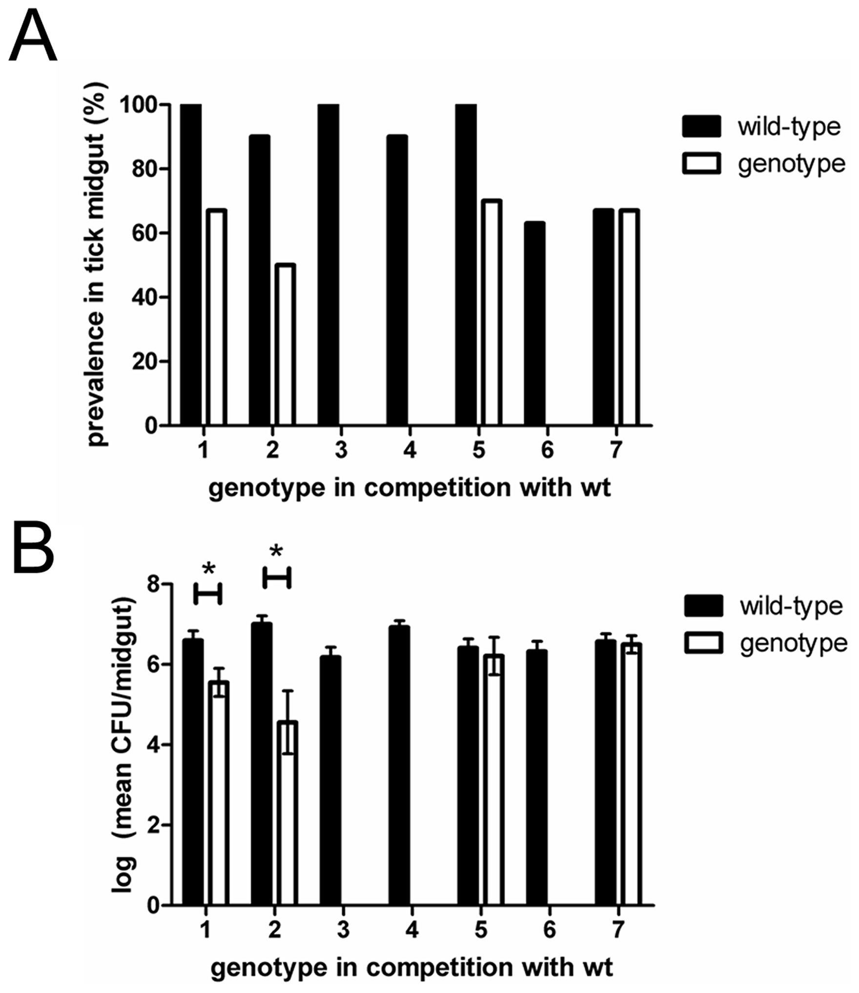 Competition between wild-type and individual genotypes.