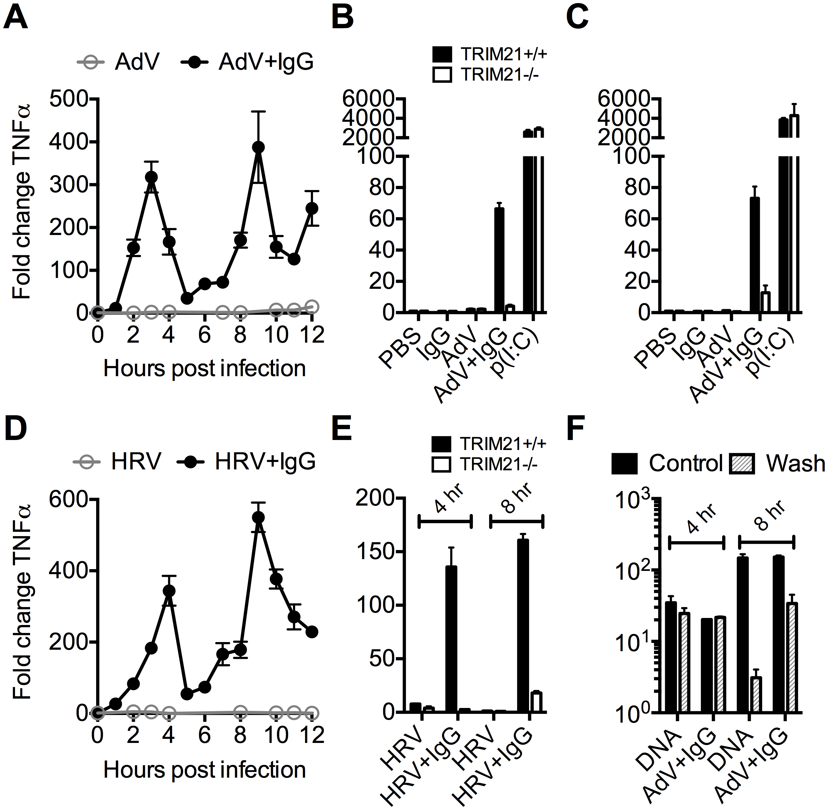 TRIM21 promotes two waves of innate immune signaling in response to antibody-opsonized virus.