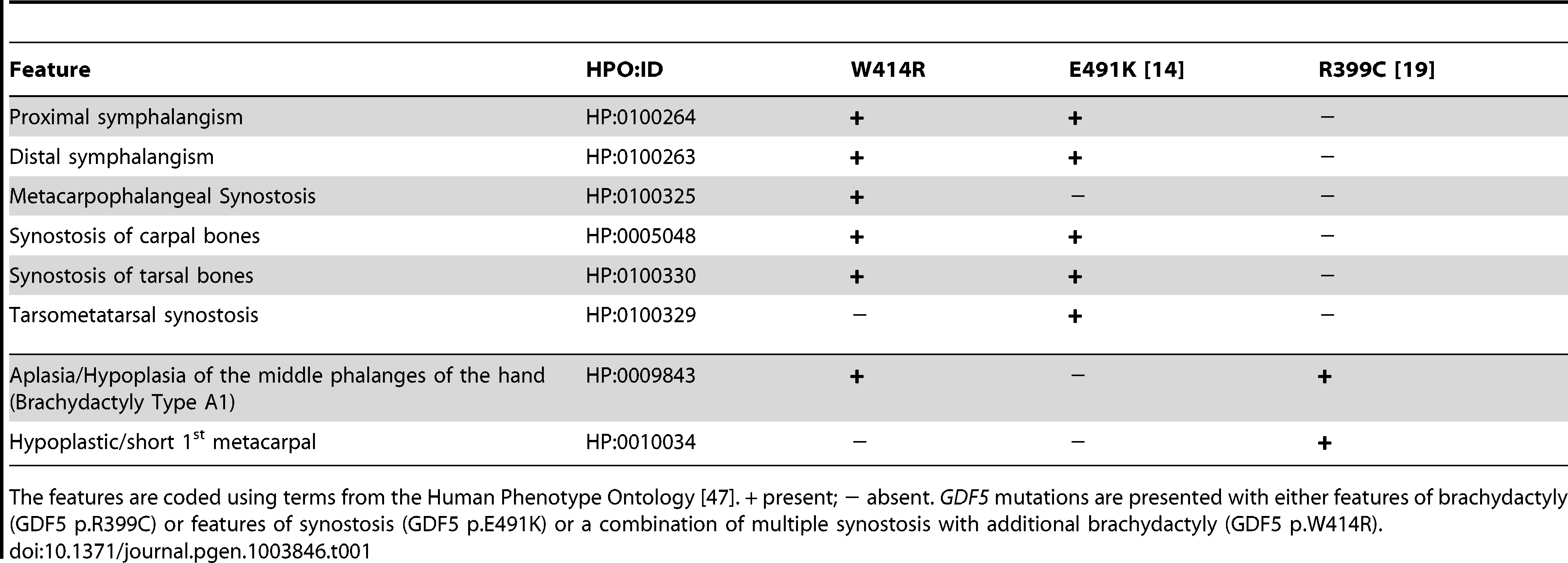 Clinical features of the affected family members with mutations in <i>GDF5</i>.