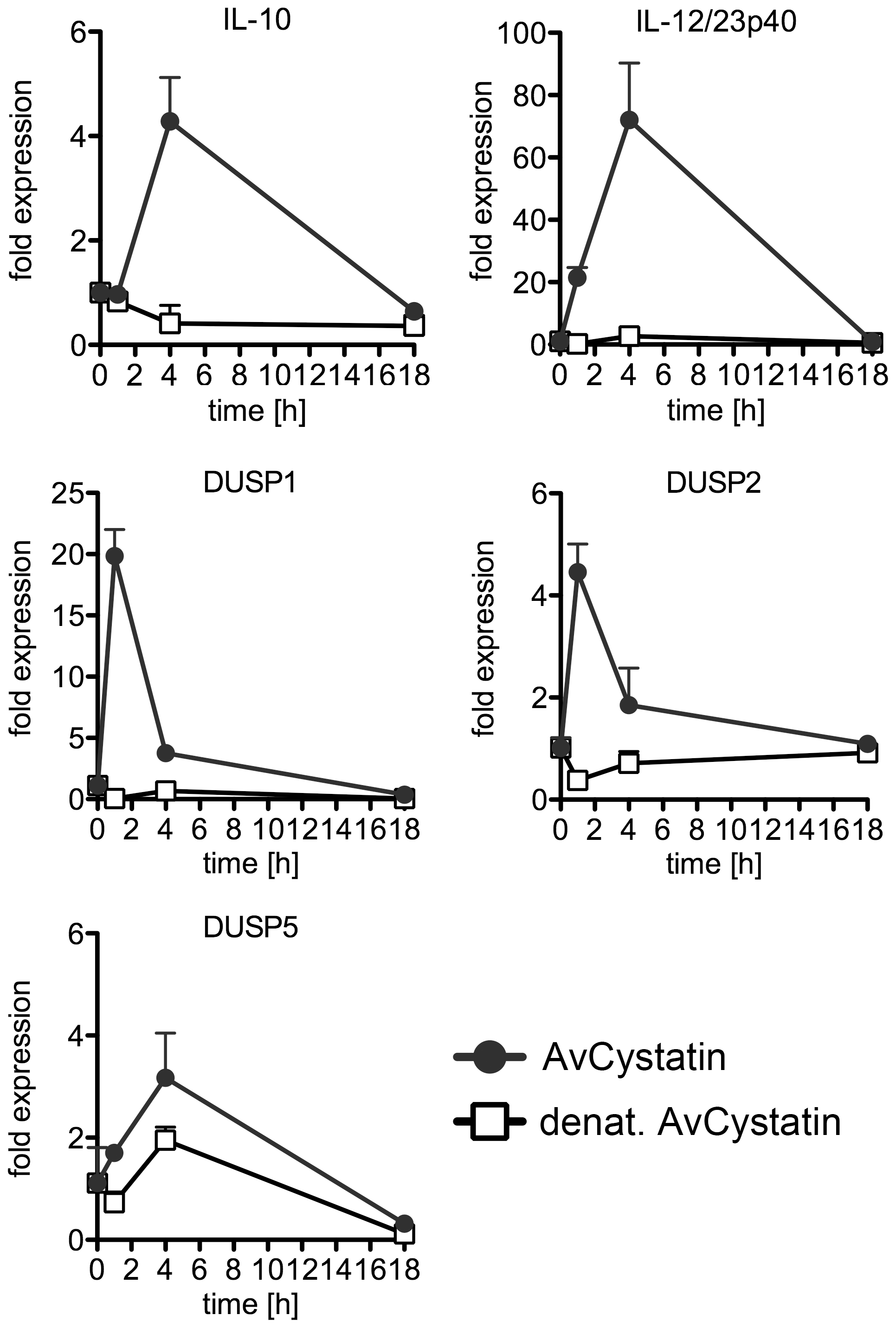 <i>In vivo</i> effect of AvCystatin confirms cytokine and DUSP expression.