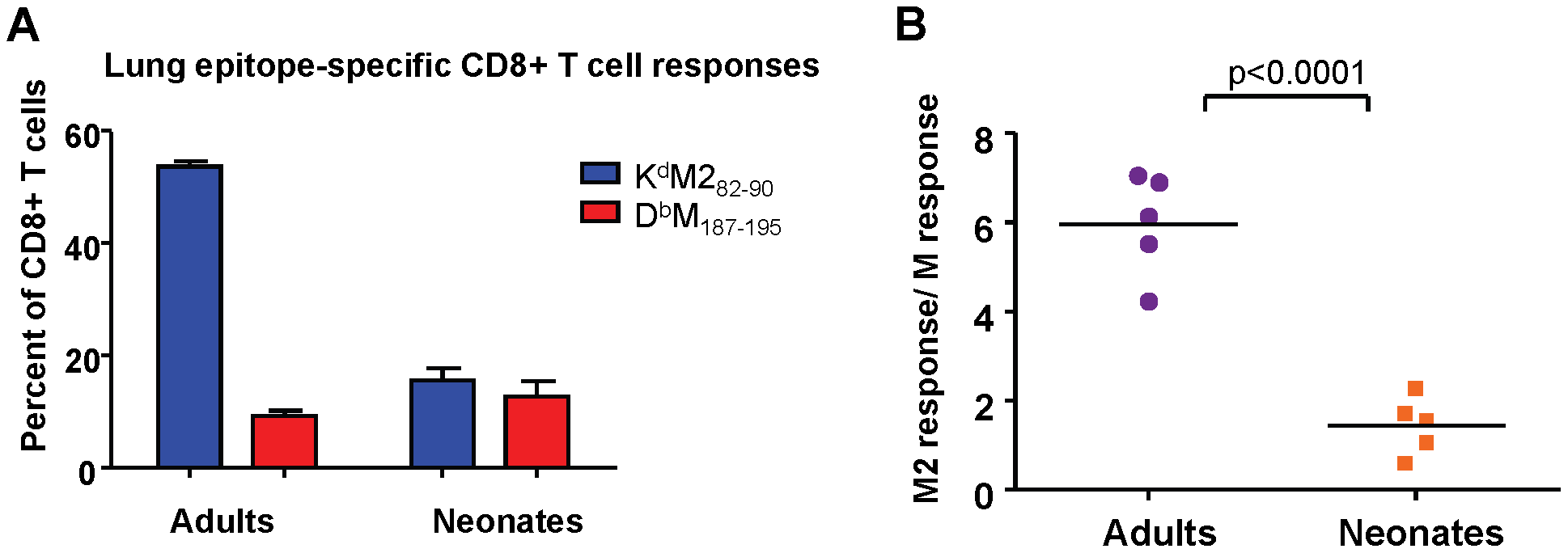 Epitope-specific CD8+ T cell responses following infection with rAd5-MM2.