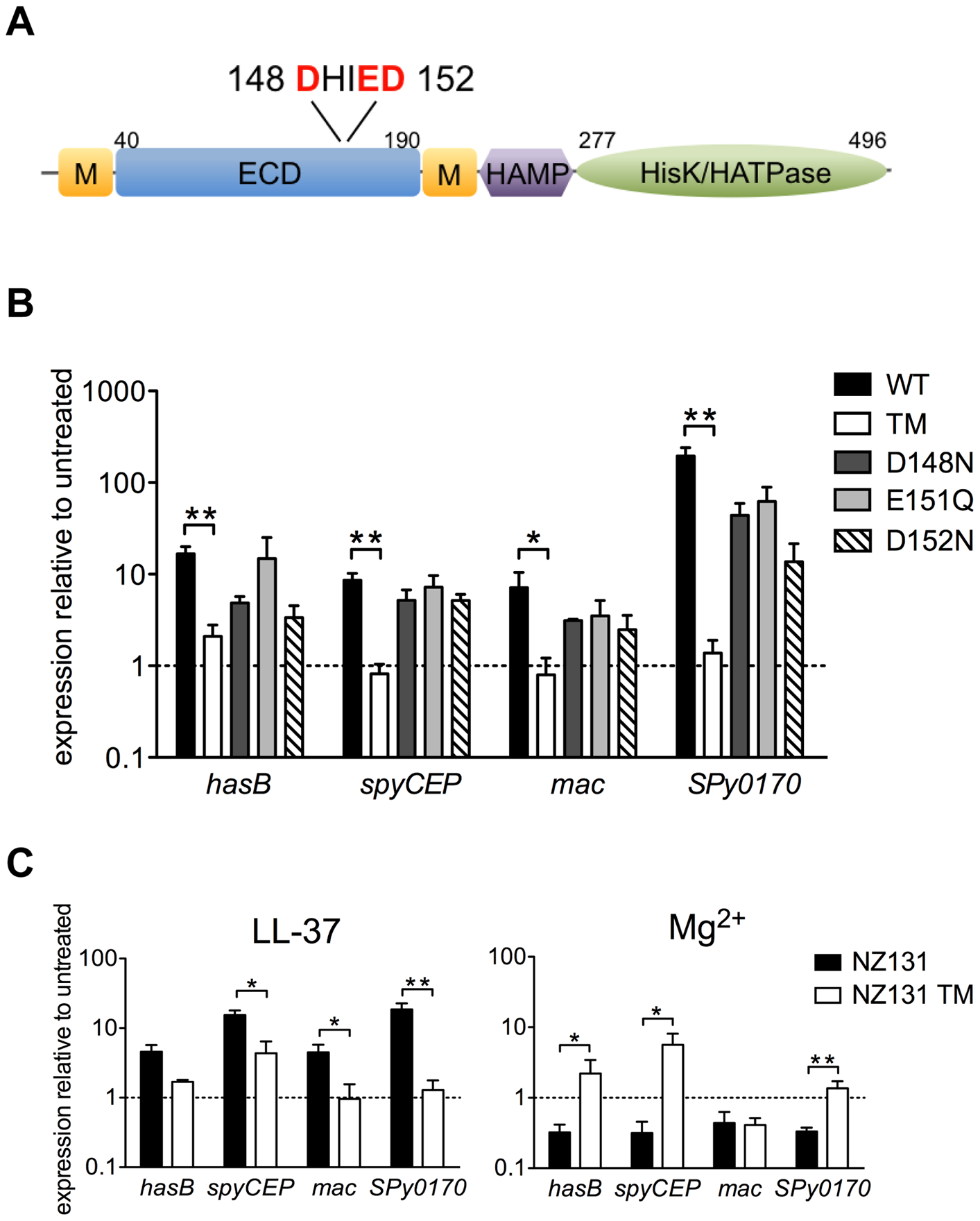 LL-37 and Mg<sup>2+</sup> signaling of CsrRS-regulated genes involves a cluster of negatively charged amino acid residues located in the CsrS extracellular domain.