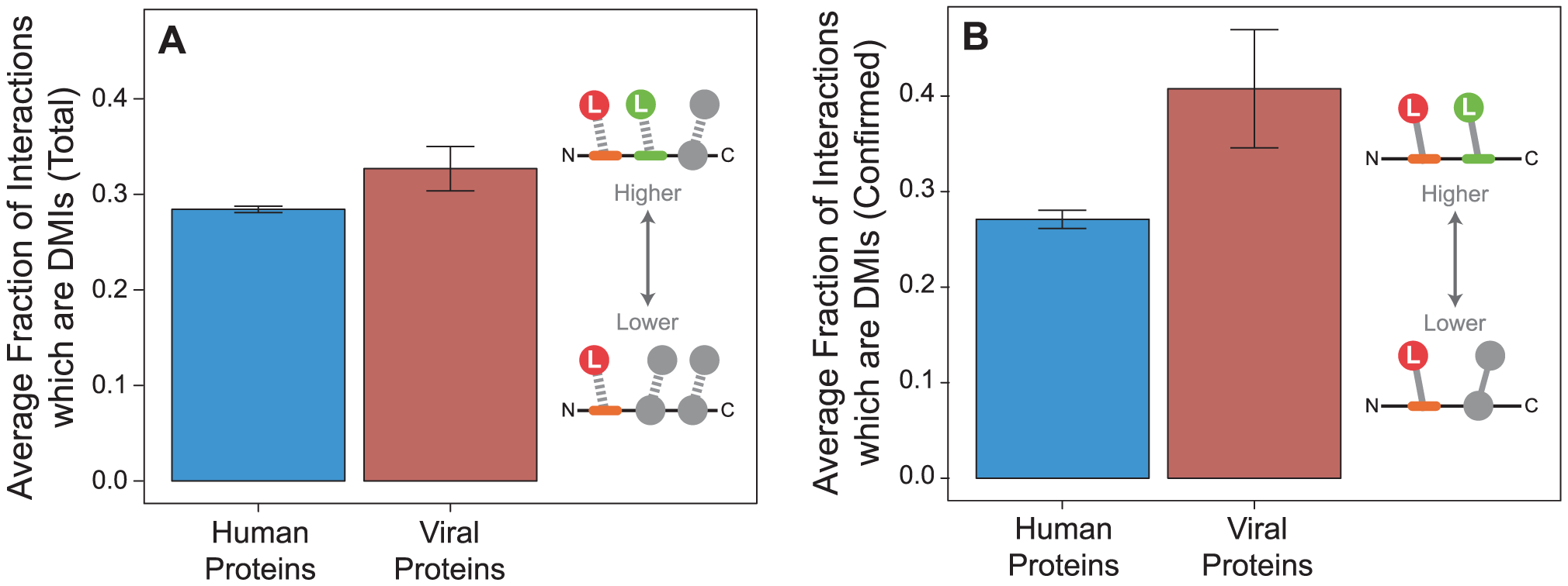 Viral proteins have a higher fraction of domain-motif interactions (DMIs) than human proteins.
