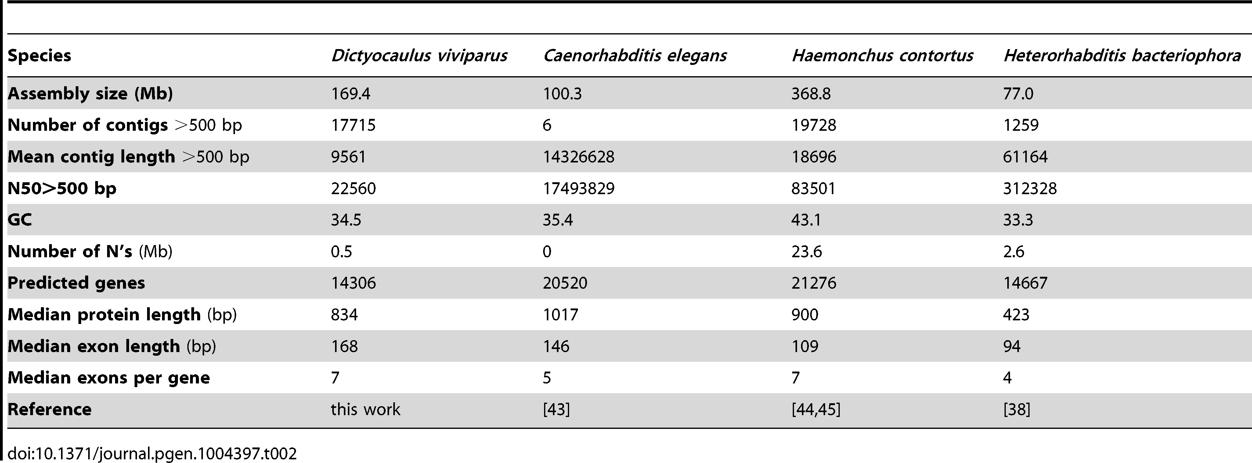 Genome assembly and annotation metrics of <i>D. viviparus</i> and other Rhabditina species.