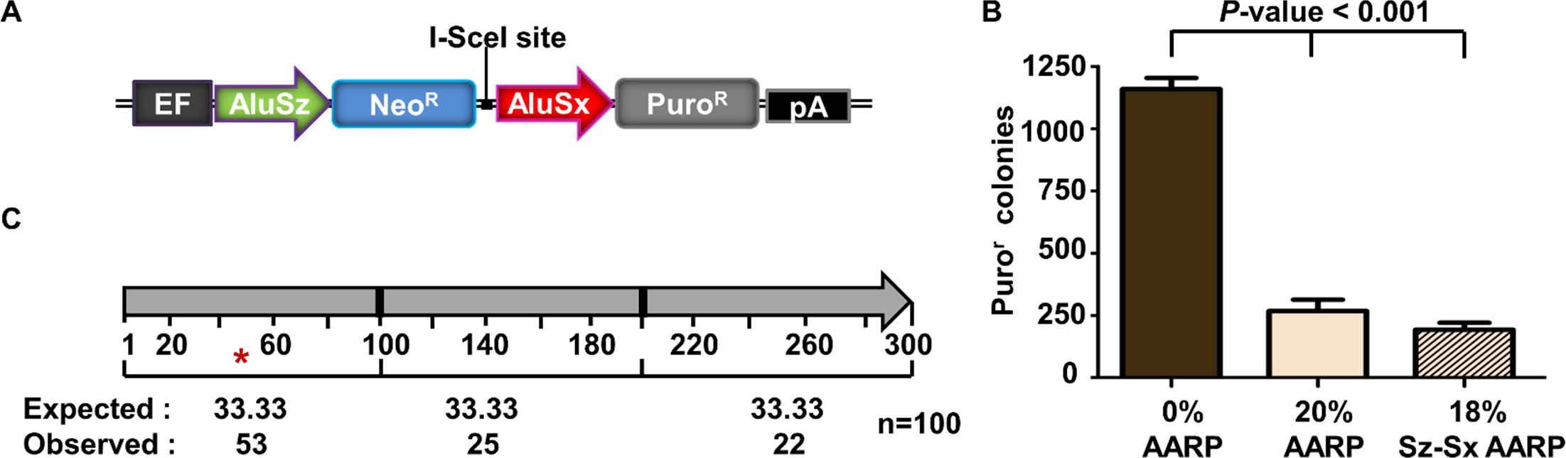 Alu/Alu recombination of disease-causing genomic Alu elements.