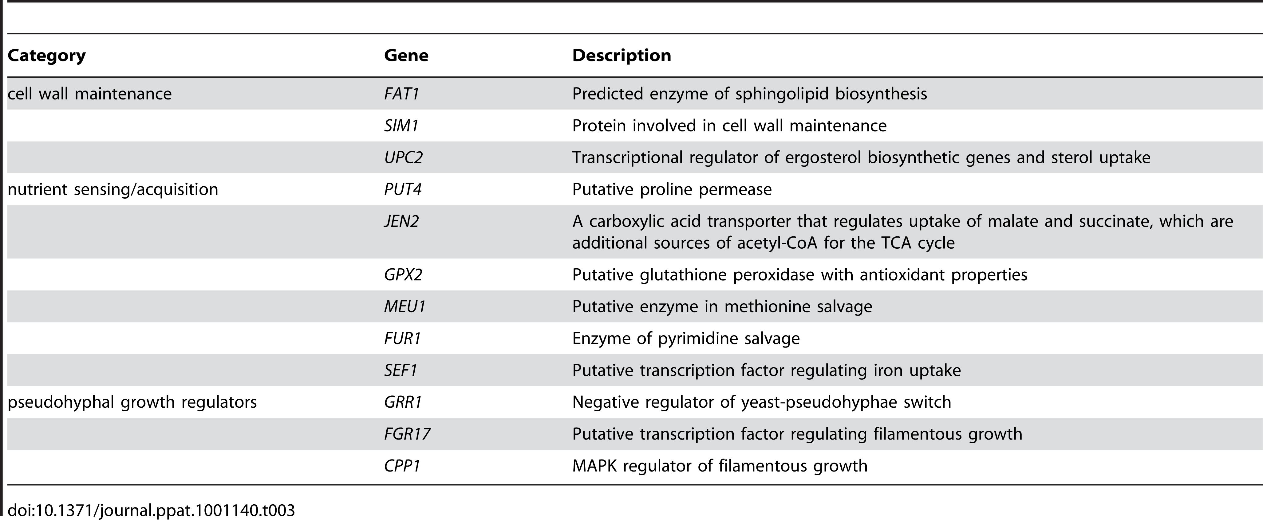 Categories of genes haploinsufficient in reduced-nutrient conditions.
