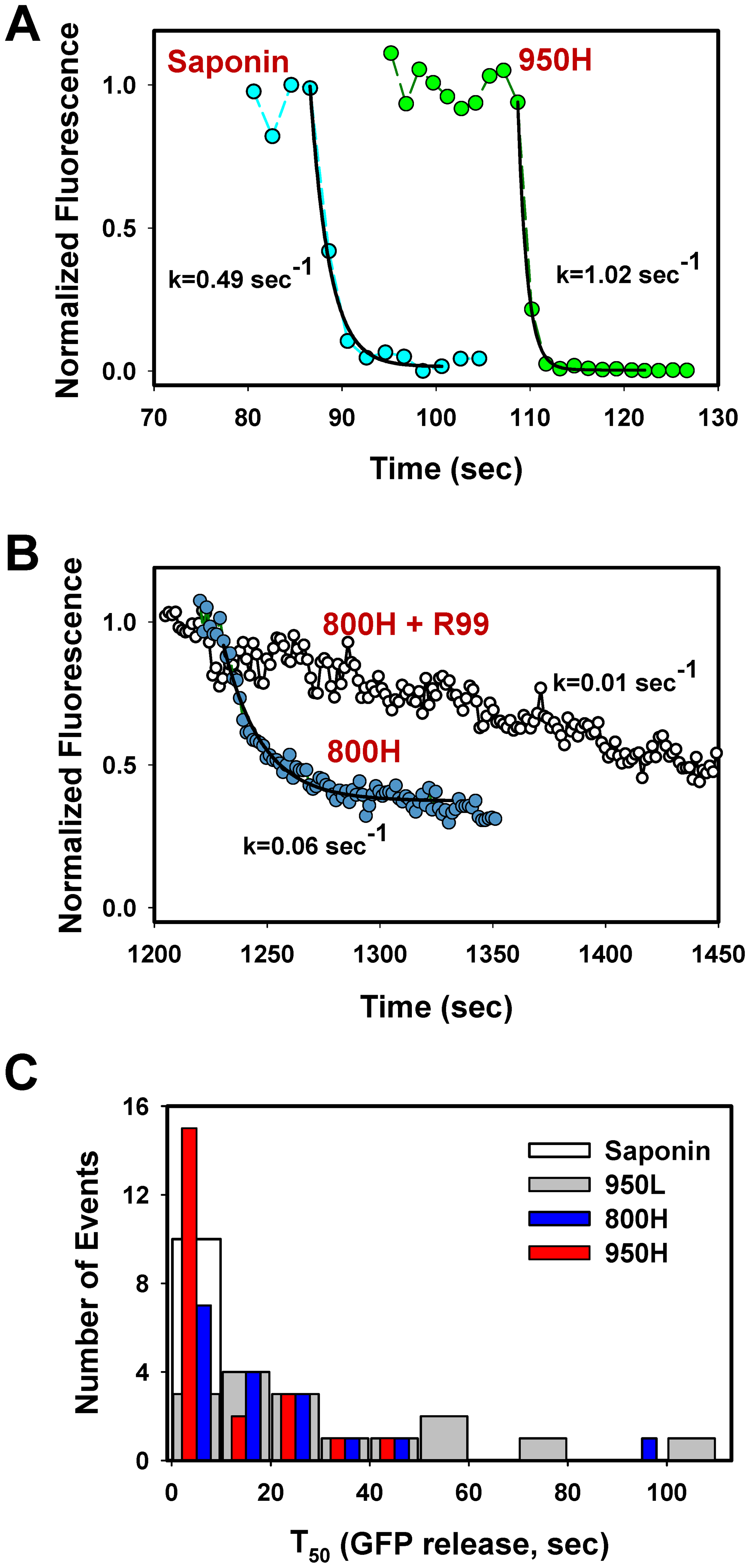 Analysis of the rate of NC-eGFP release from single viruses fusing with endosomes.