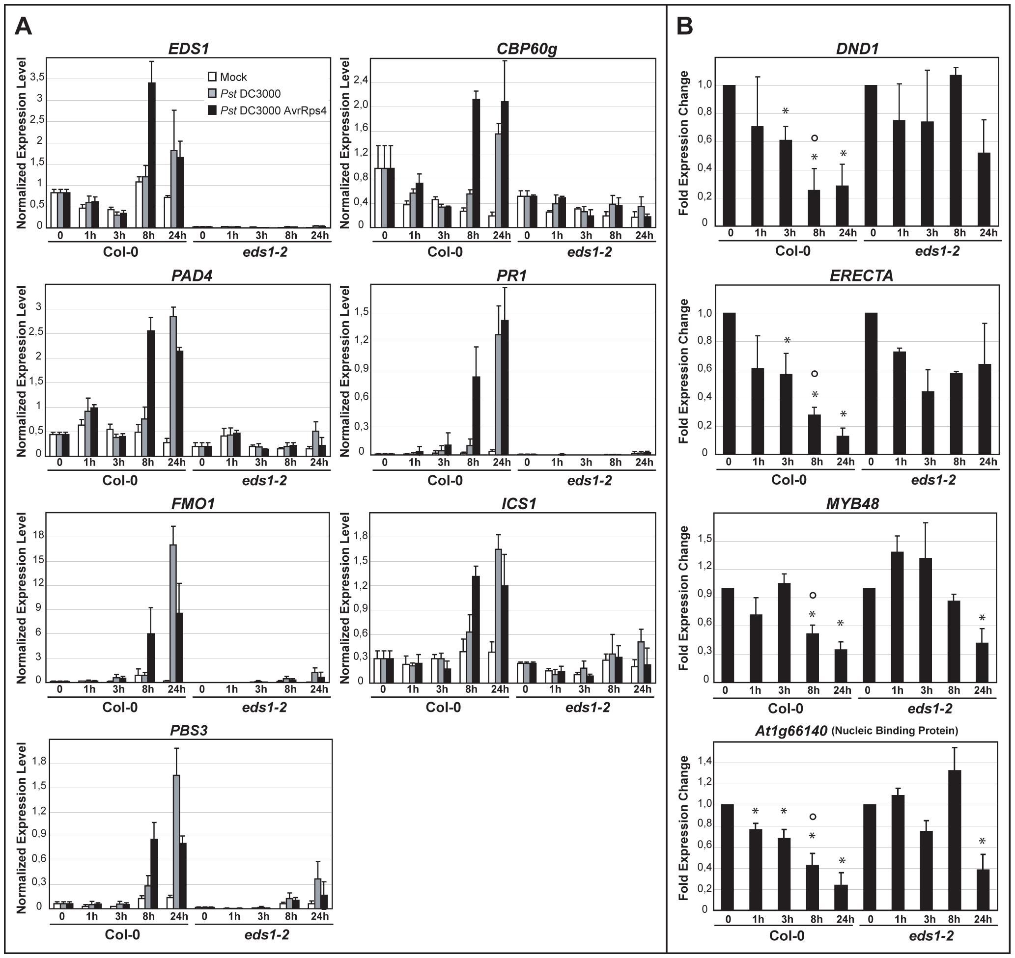 Quantitative transcript profiling of EDS1-dependent genes in response to virulent and avirulent <i>Pst</i> DC3000 bacteria.