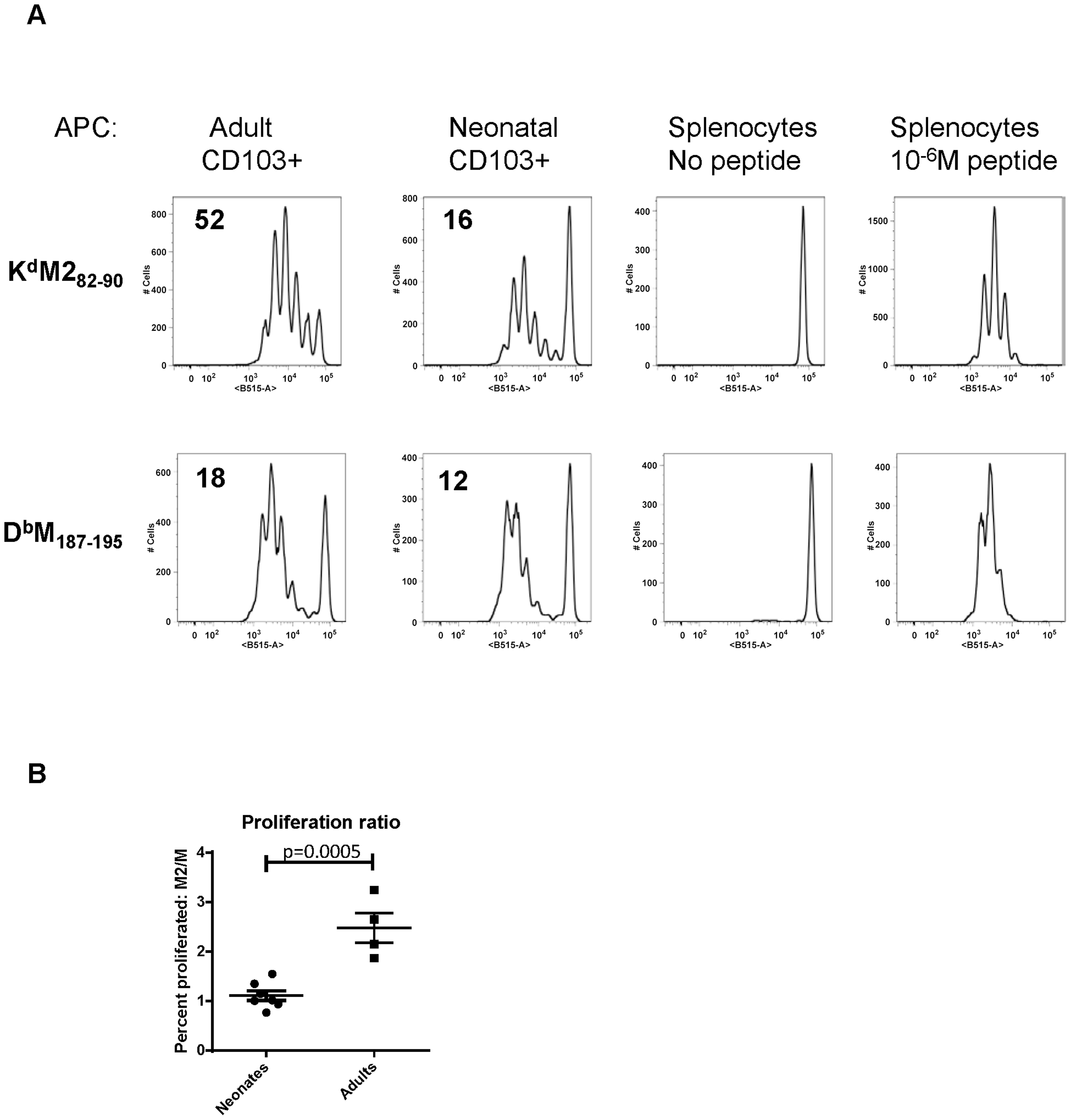 Neonatal CD103+ DCs differentially induce RSV-specific adaptive CD8+ T cell responses.