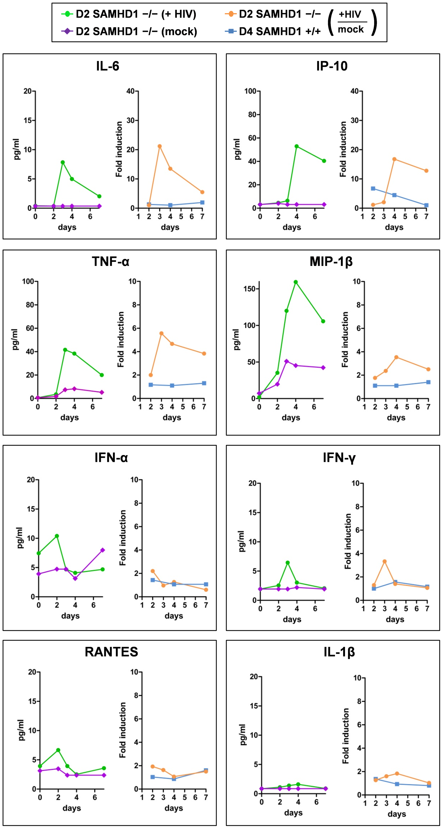 Cytokine secretion of PBMC lacking SAMHD1 indicates an early inflammatory response during HIV-1 replication.